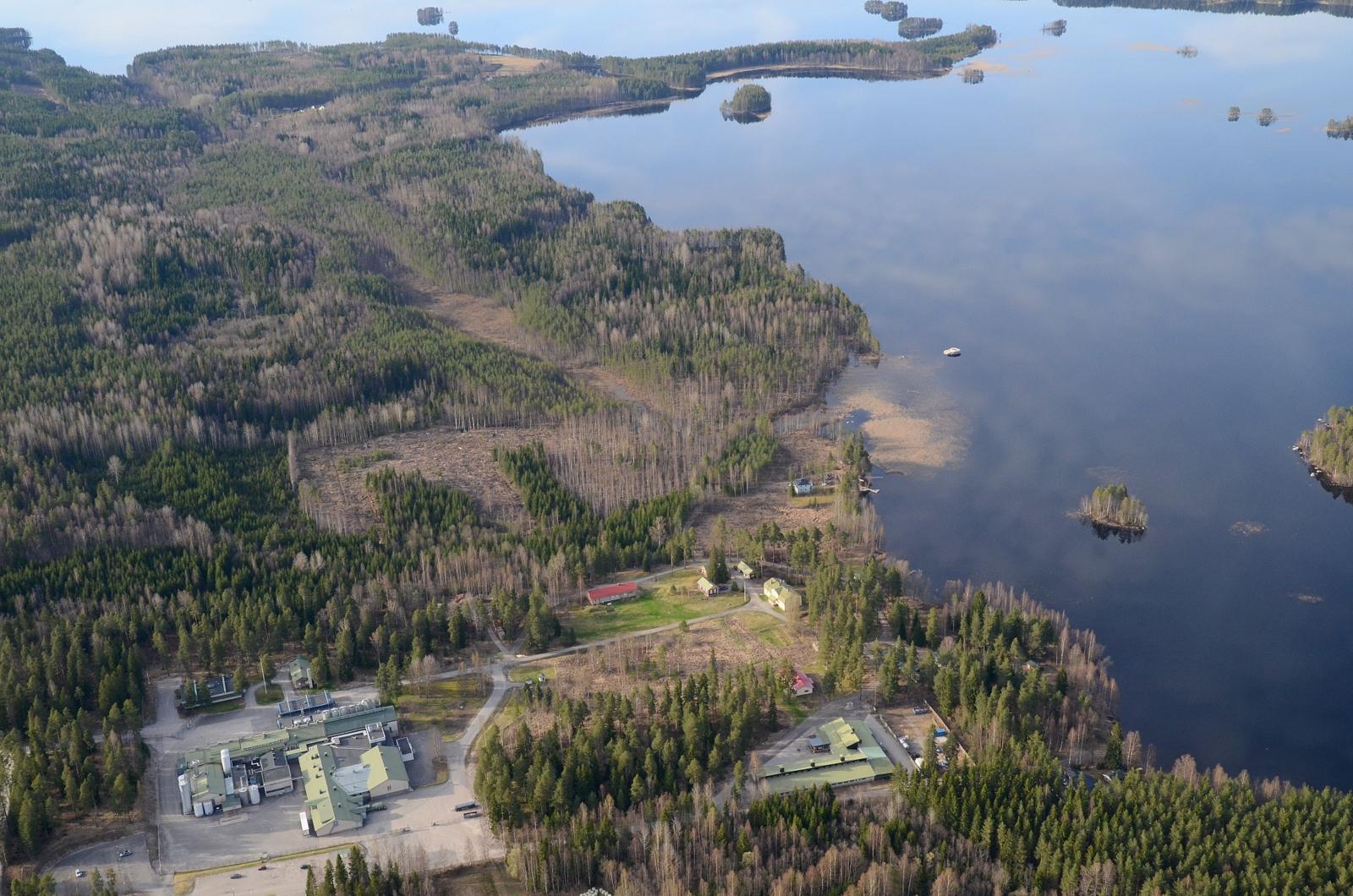 Valion seutua Rotkolassa. Kuvassa ylhäällä Kovalanniemi.