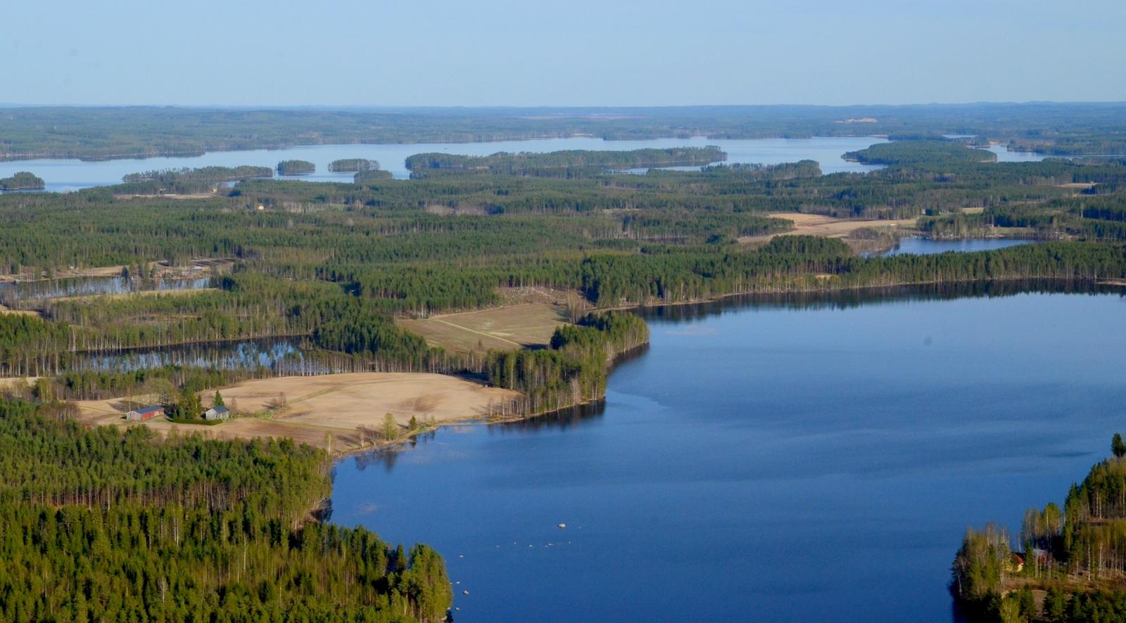 Tiirinen selän takana Tiirilän tila Kuhalankylällä. Taustalla Matoselkä.