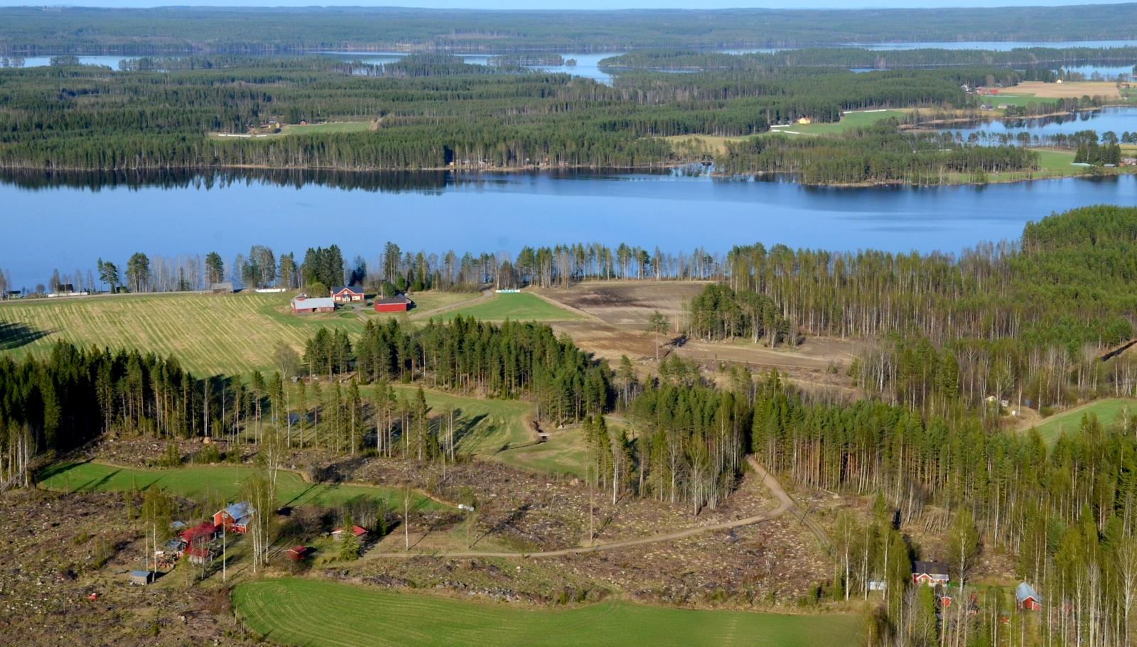 Rantalasta länteen, Puromäki, Koivurinne ja Syrjälä.