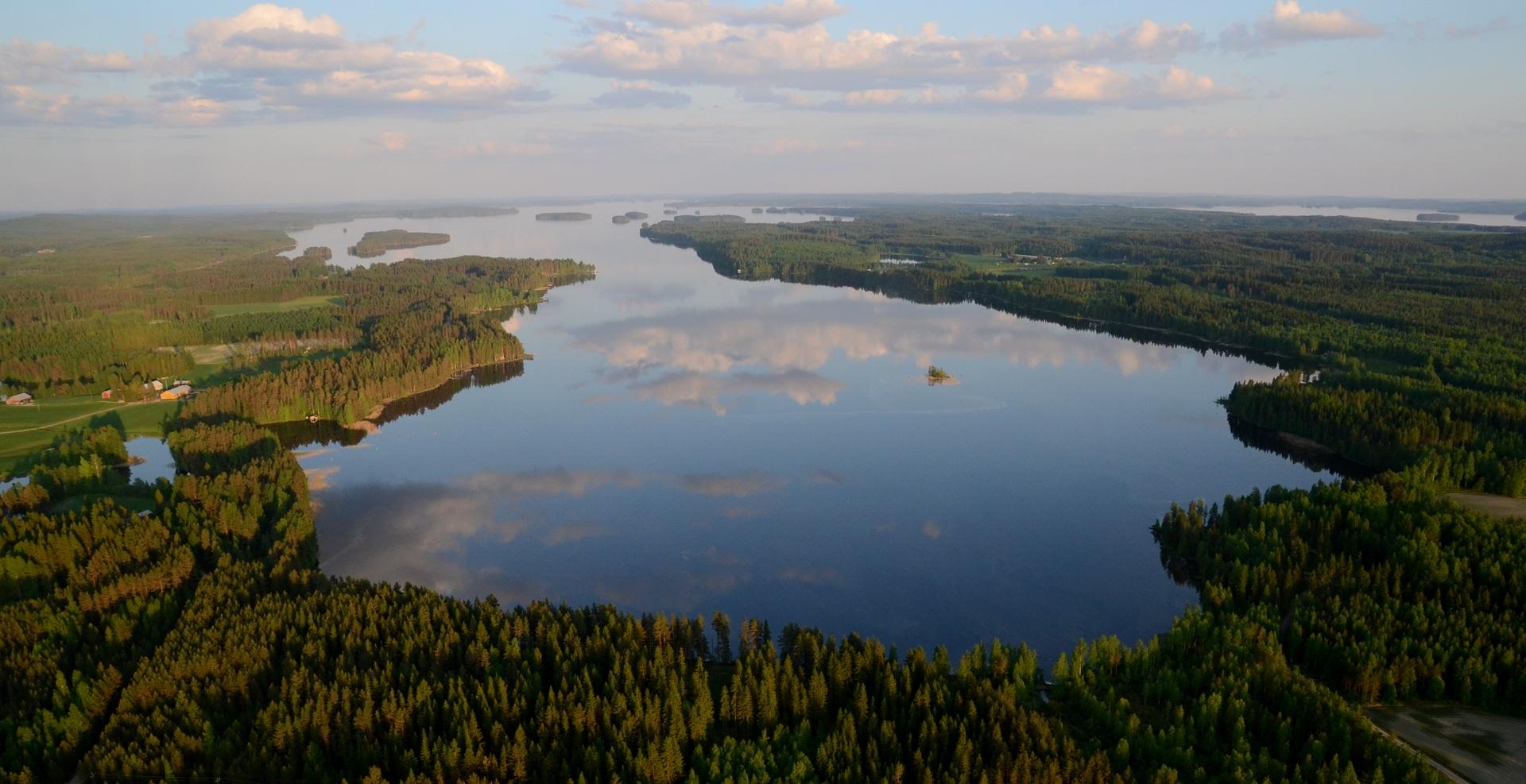 Sammalislahti ja järvihän on edelleen Pohjois-Konnevettä