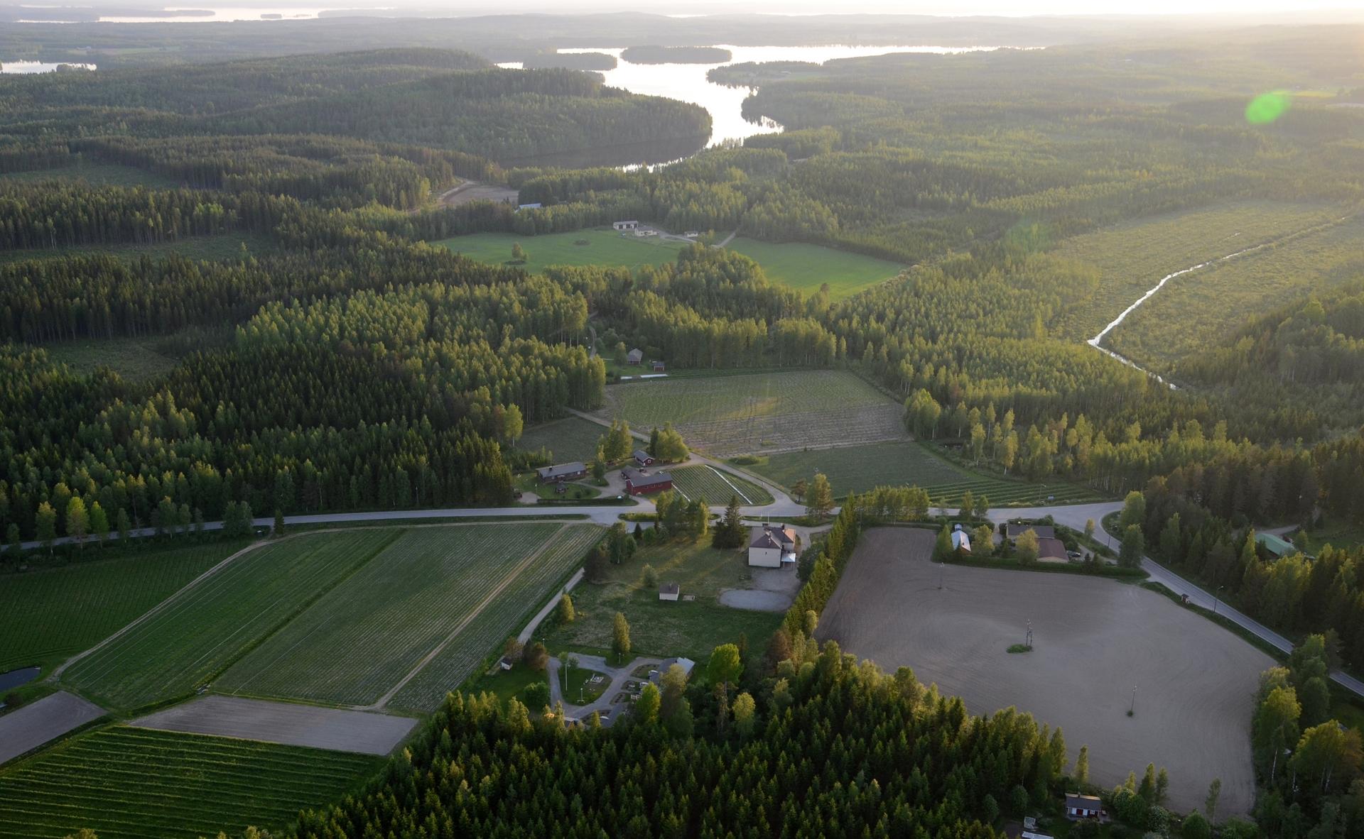 Ahveninen Iso-Vesijärven suuntaan. Oikealle alas suuntautuva tie vie Vesannolle.