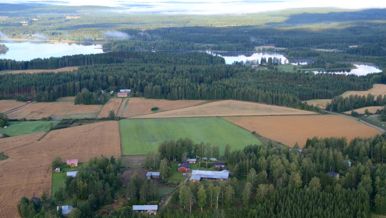 Kallula, Metsola ja Hakkara. Taustalla Pyyrinlahti ja Niemelä.