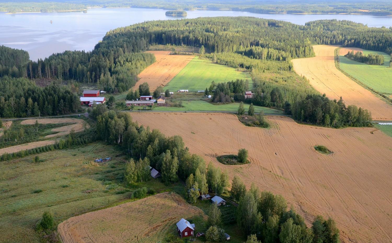 Edessä Pirttilä, taempana Petäjäniemi