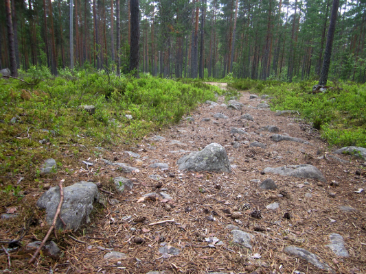 Näkötornilta alas ja tarjolla on kalliota, kovaa polkua ja mukulakiveä