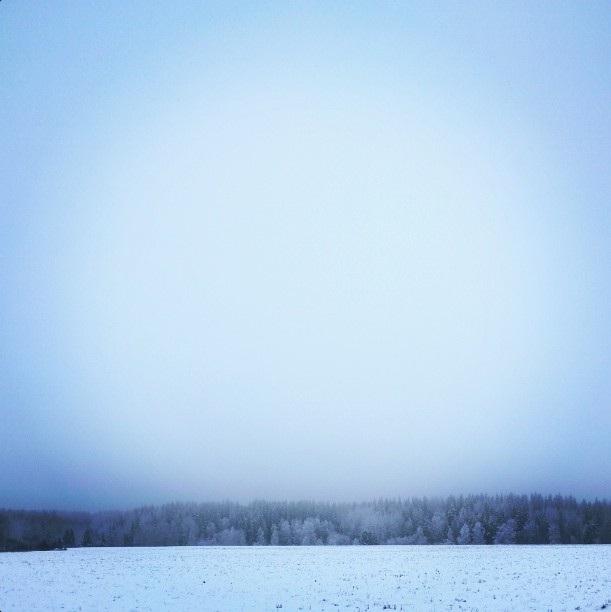 Talvi5