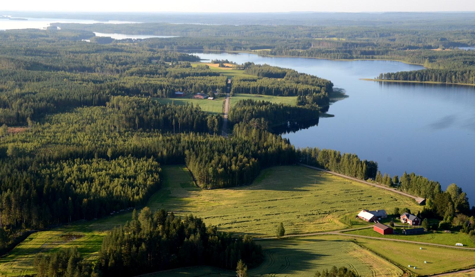 Viikinkartano