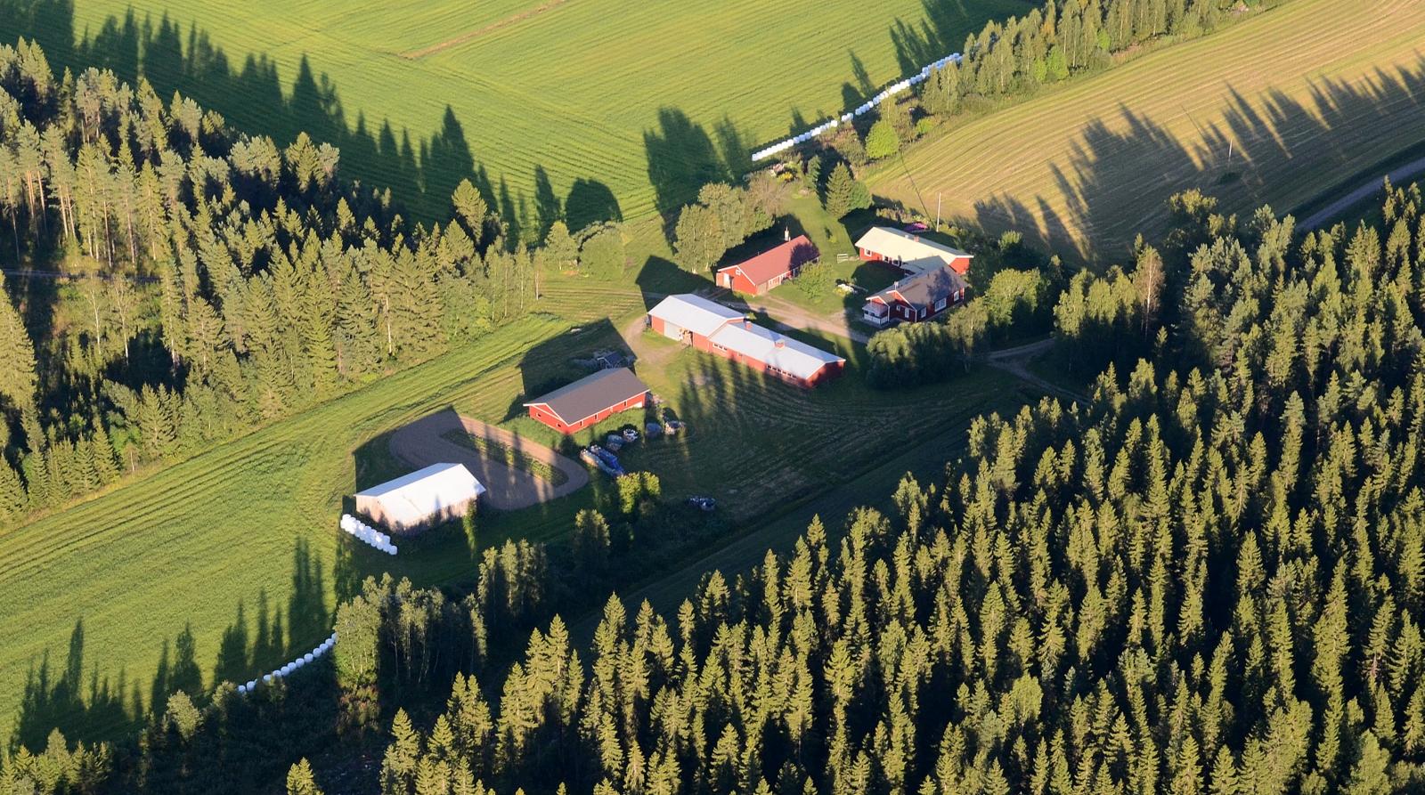 Rasila selkeästi Vesannon mailla, kun oikaisin vähemmän metsäisiä maisemia Viitasaaren Kaakonkulmalle.