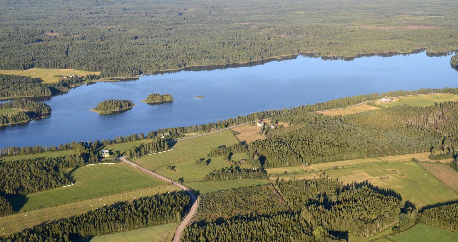 Iso-Ahvenisjärvi jossa on Viitasaaren ja Vesannon rajan kulma. Järven takana oleva maatila on Viitasaaren puolella.