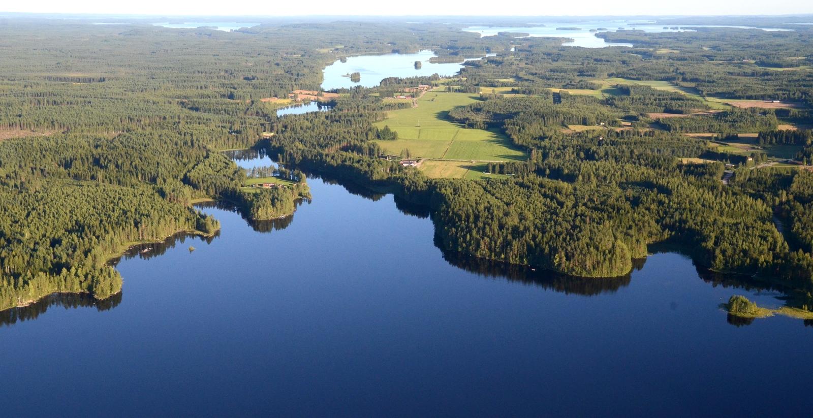 Ahveninen, taustalla häämöttää Pohjois-Konnevesijärvi
