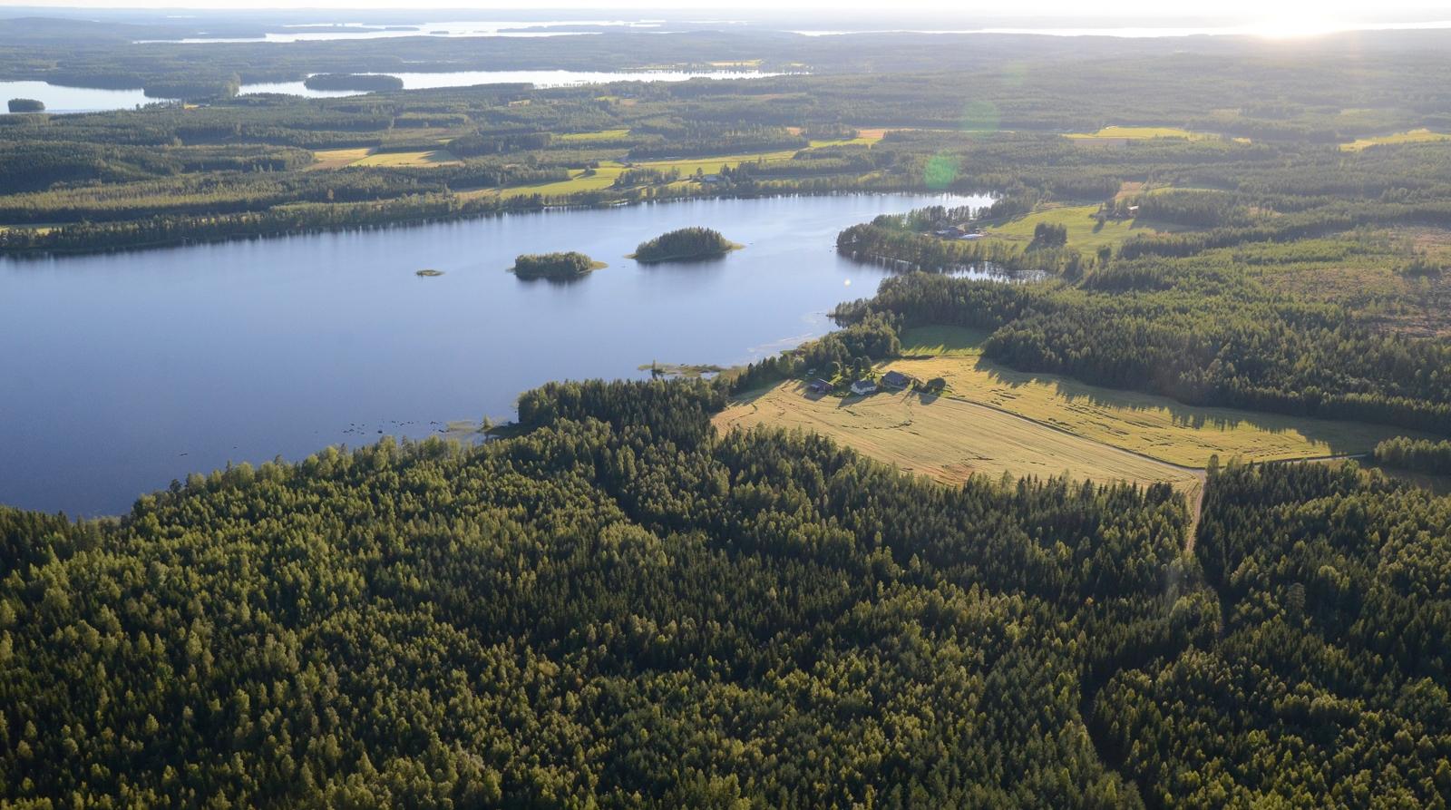 Viitasaaren Kaakonkulmalla. Aurinko heijastuu Suovanselältä.