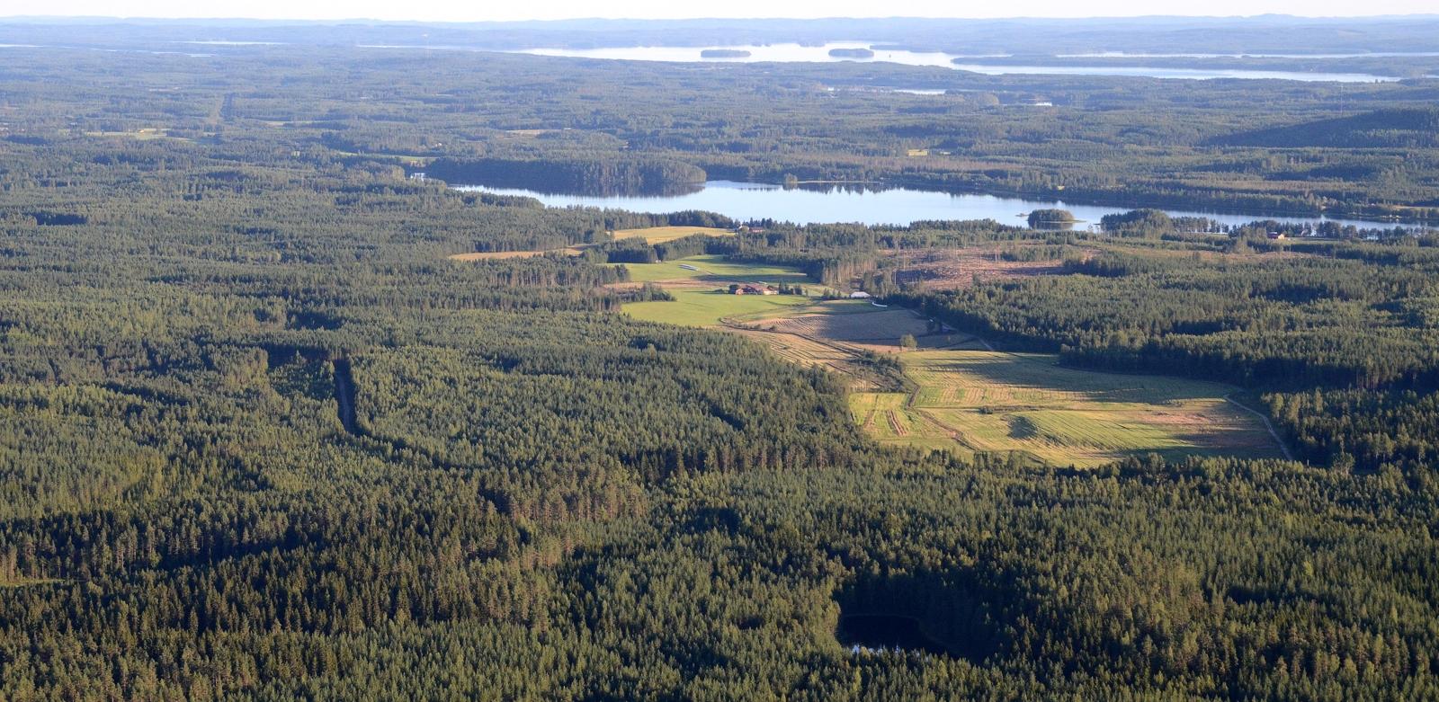 Halla-Aho keskellä pitkää peltoaukeaa.