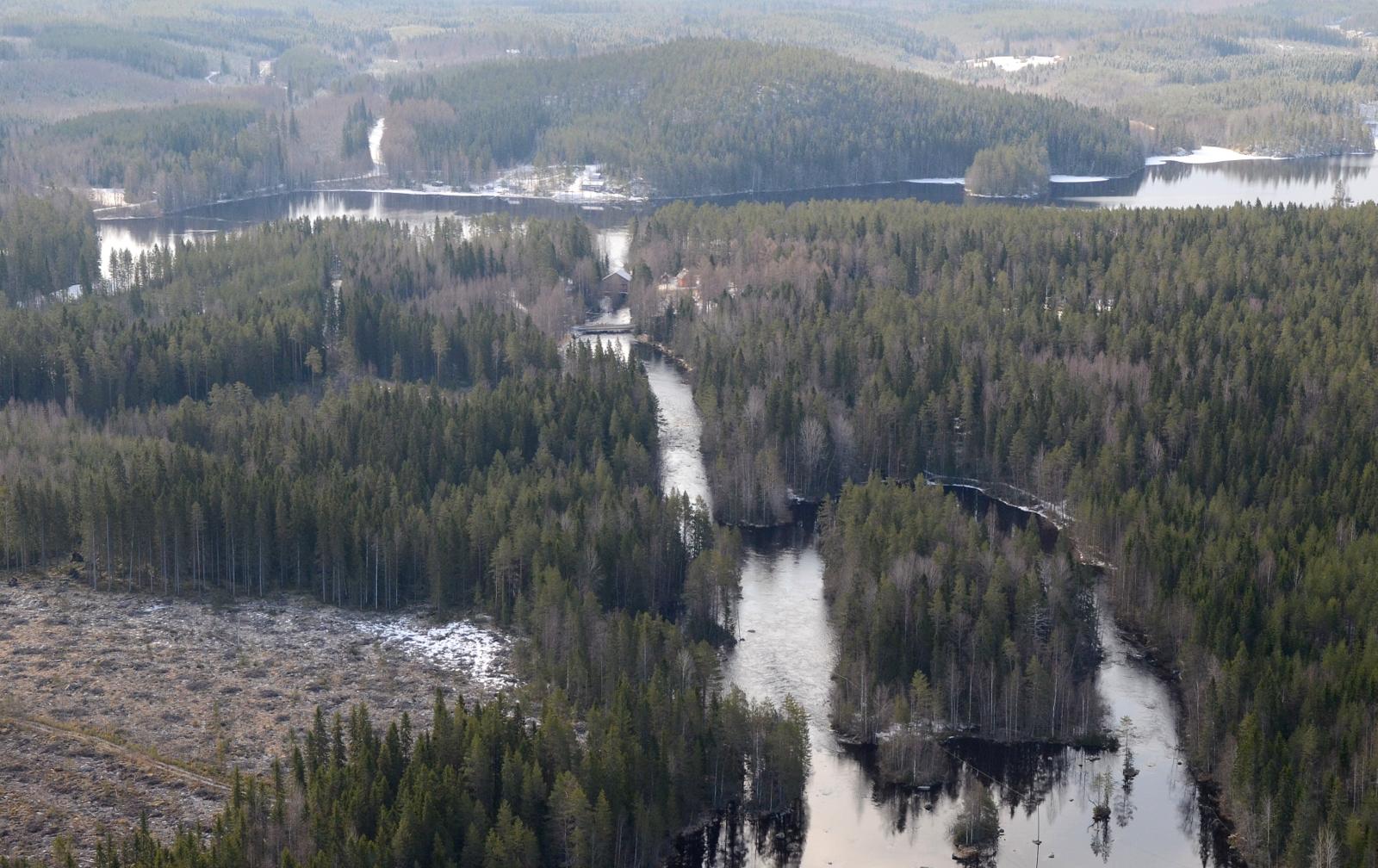 Kärnänkoski, taustalla Kärnäjärvi.