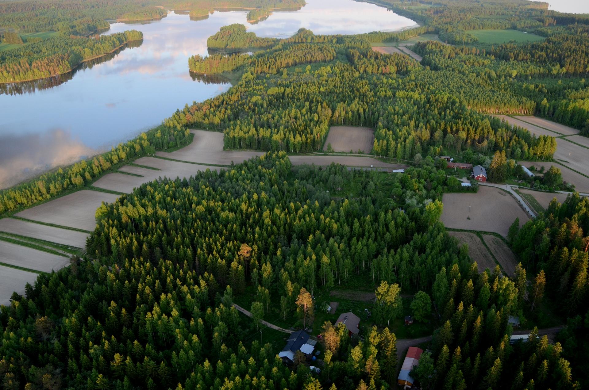Horonkylää