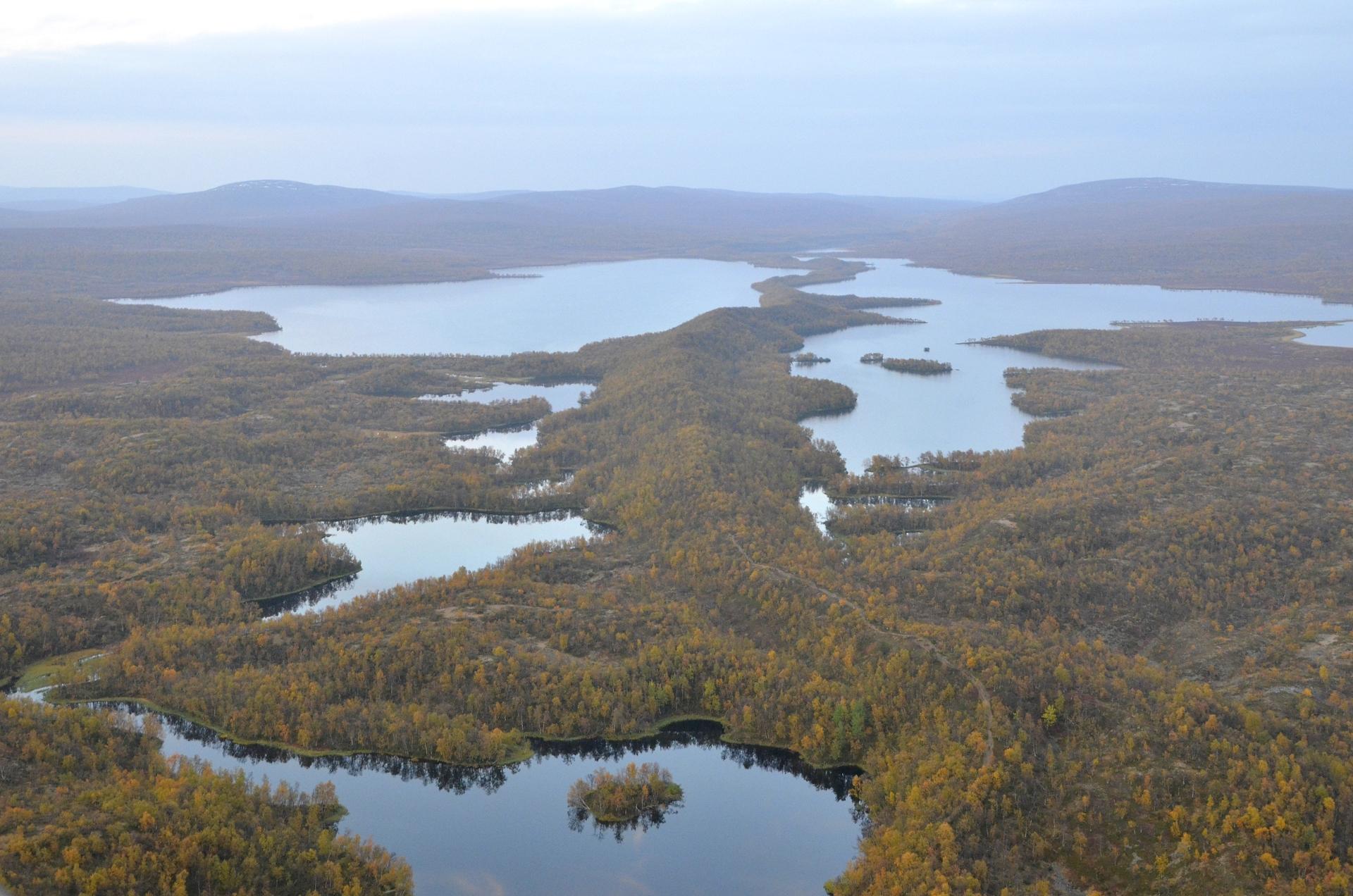 Luomusjärven keskellä on harjanne, jota pitkin Kevon patikointireitti etenee.