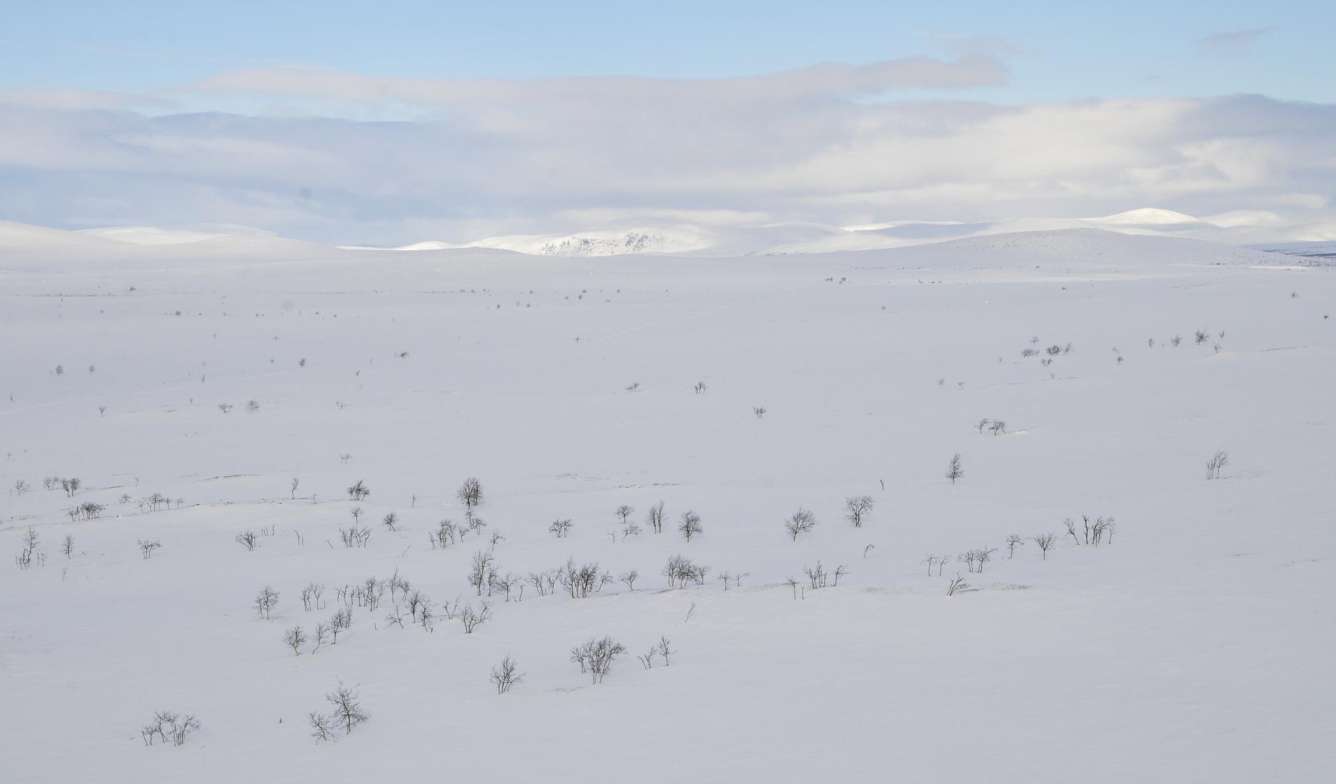 Nyt otan suunnan suoraan etelää kohden Govagorsagiervarria kohti ja maasto alkaa kohota ylemmäksi.