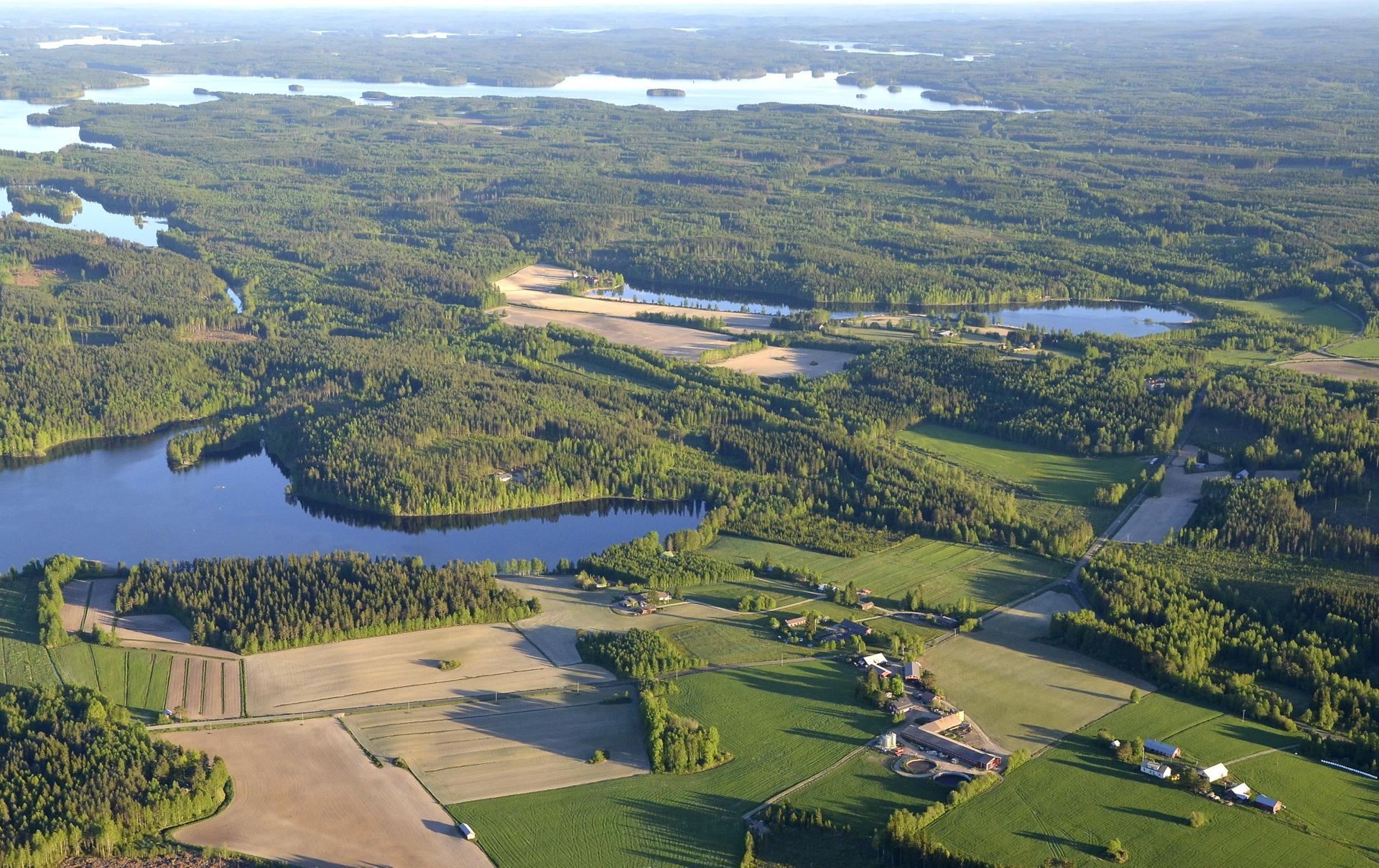 Kalaniemi Räihänselän suuntaan kuvattuna. Vasemmalla Hakojärvi.