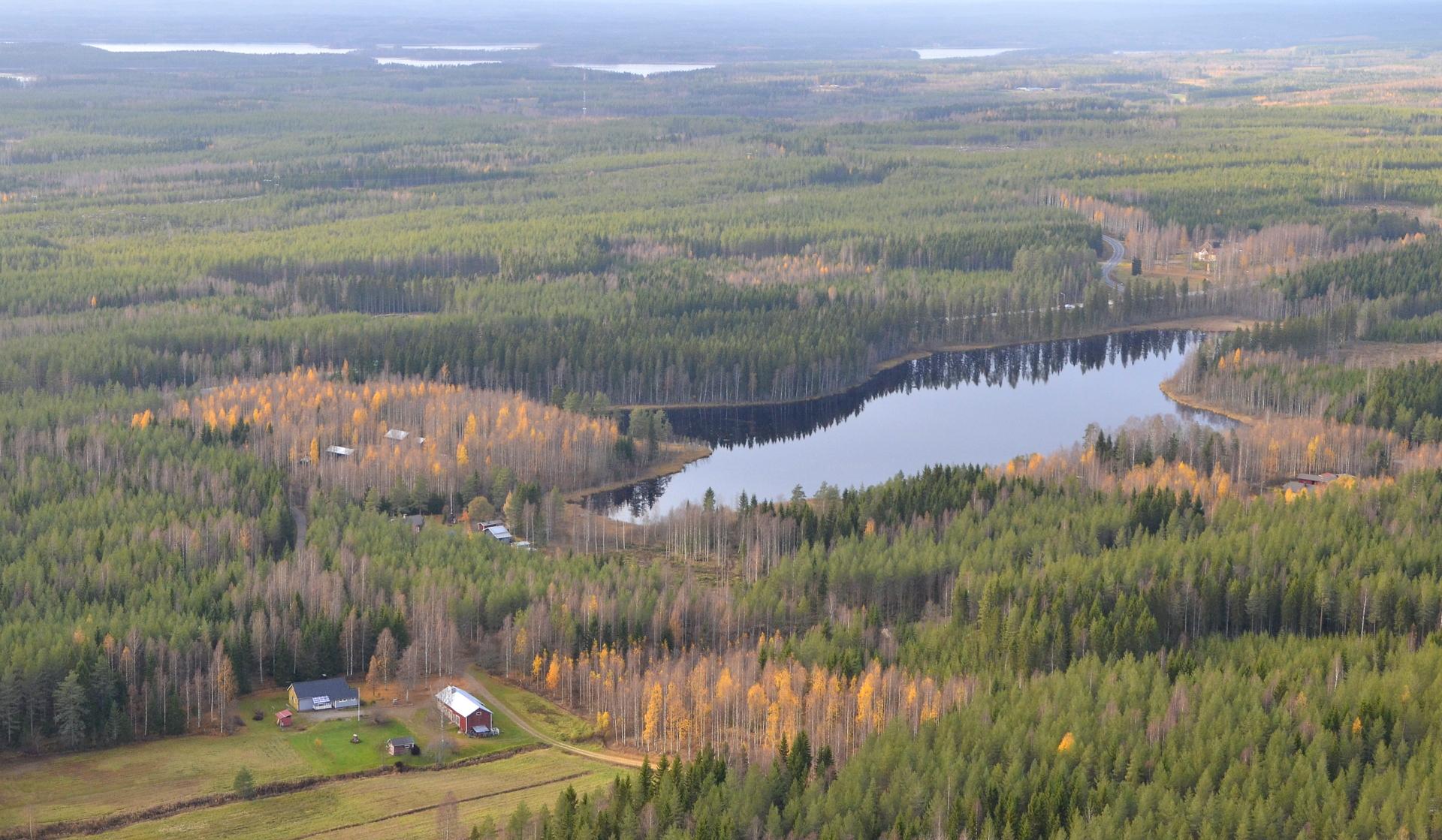 Viitajärven tienoota. Järven takana siintää Kartano Wiitatupa