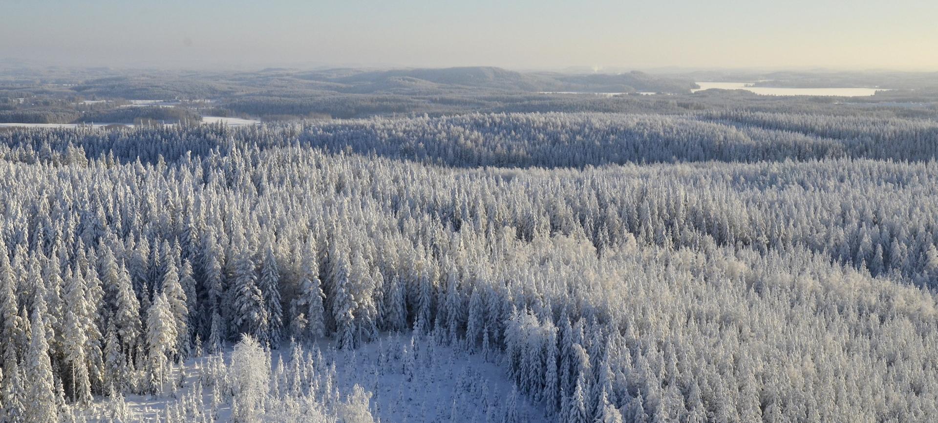 Taustalla Peurunkajärvi ja Lähdekorvamäki.