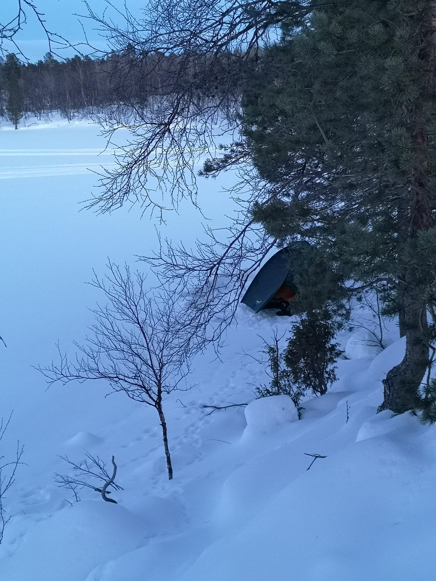 """Reinon """"piti"""" päästä vielä toiseksikin yöksi luontoon. Paikaksi valikoitui Teppanan Kotajärvi, Kaamanen-Sevettijärvi tien varrella."""