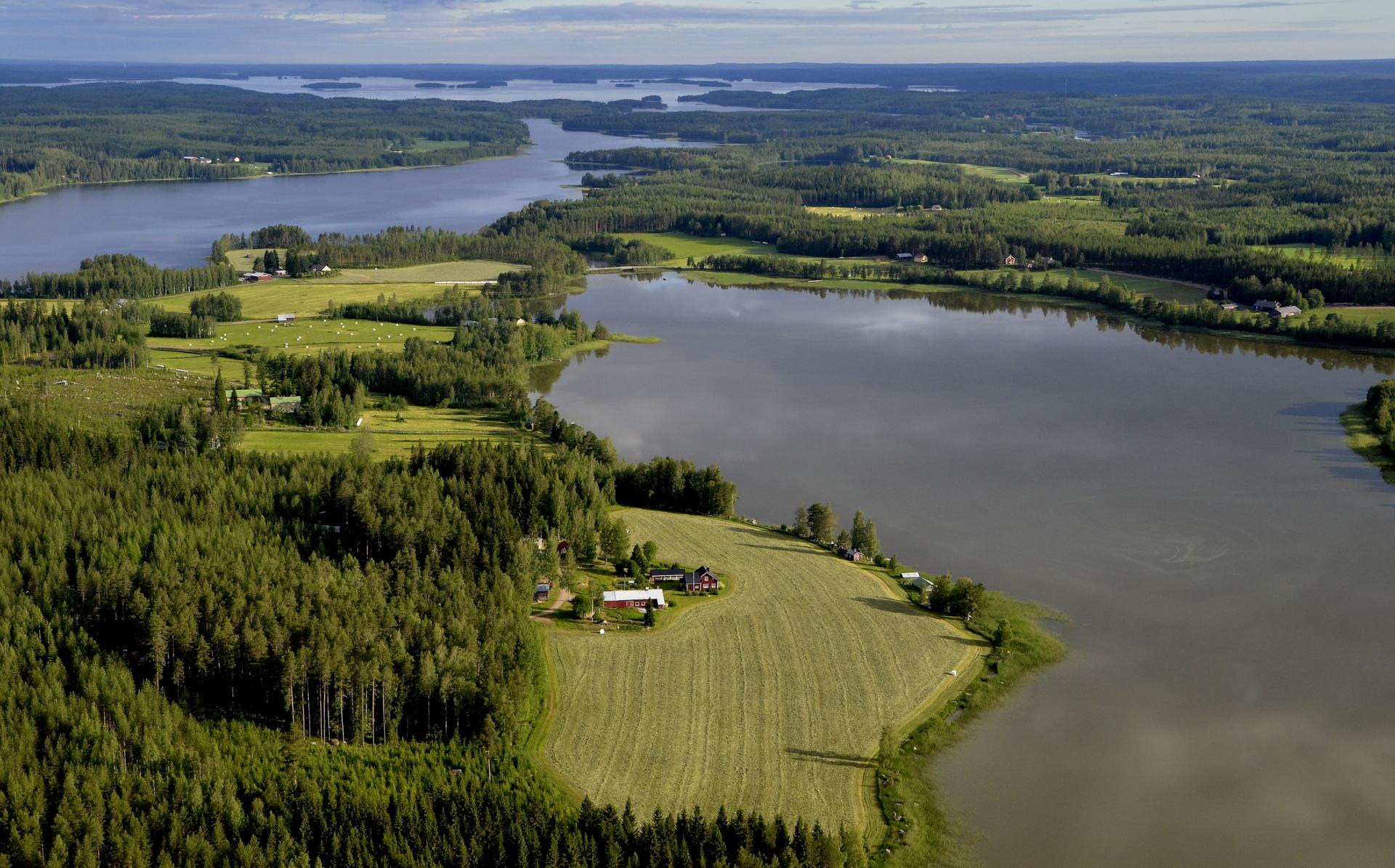 Pasalajärvi ja lähimpänä Järventauksen tilukset. Taustalla Kolima.