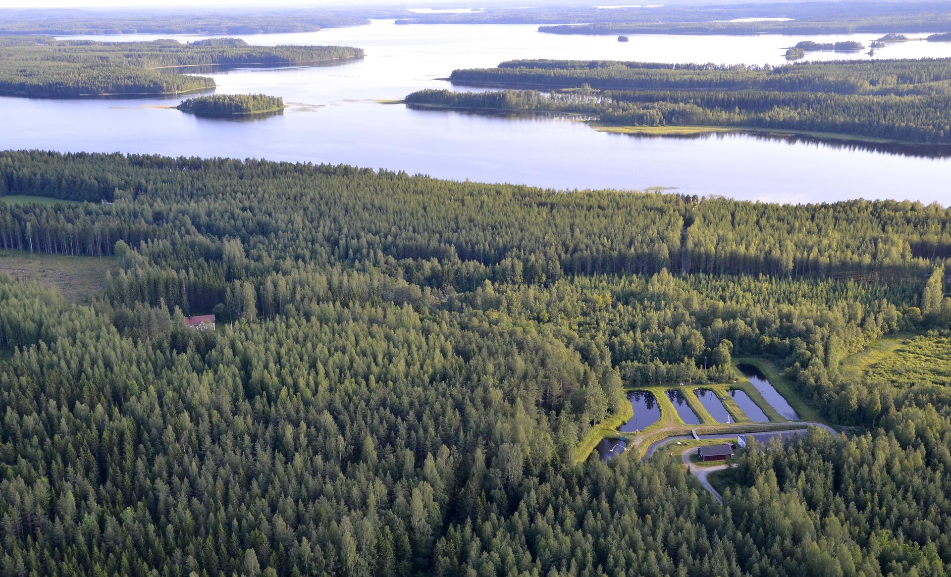 Vielä Lökönkylää, taustalla Keitelejärven Paanalanselkä.