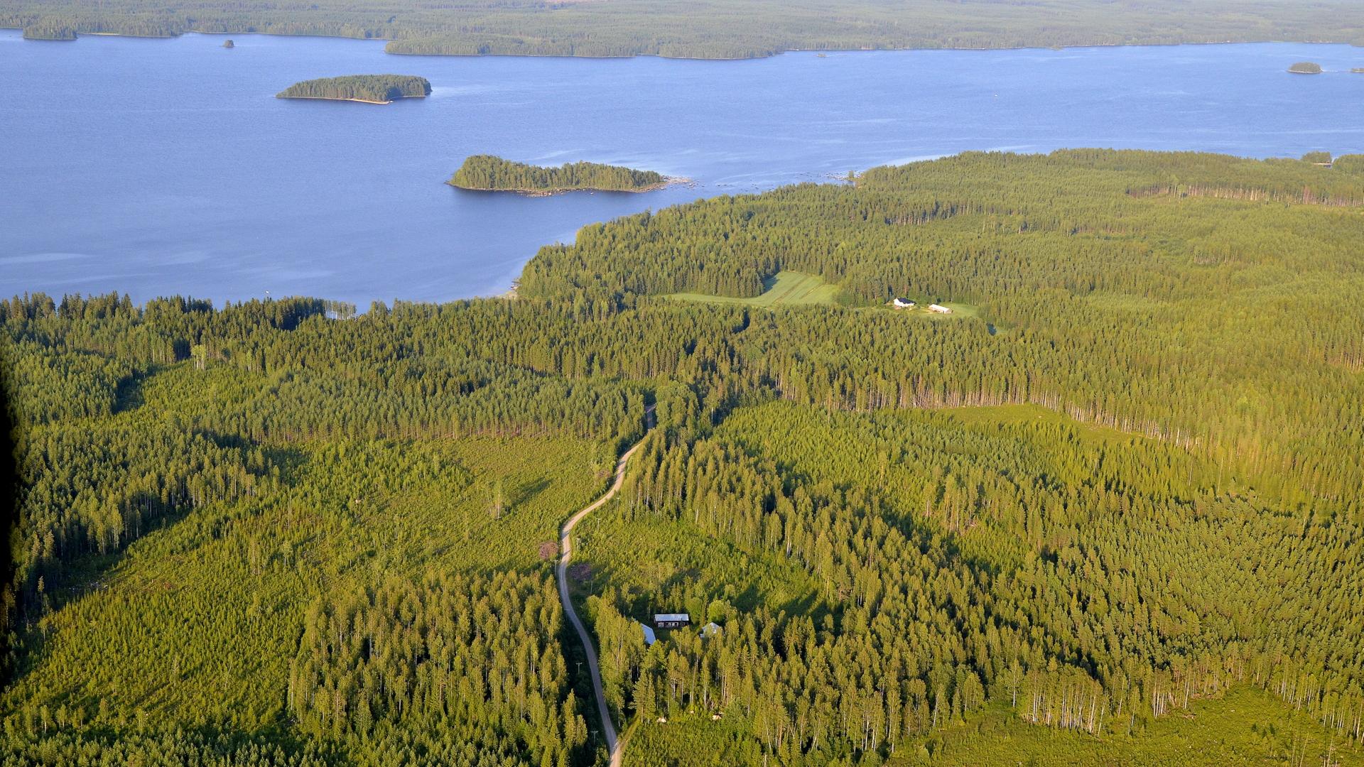Vilkaisu Kivijärven Lintuselälle.