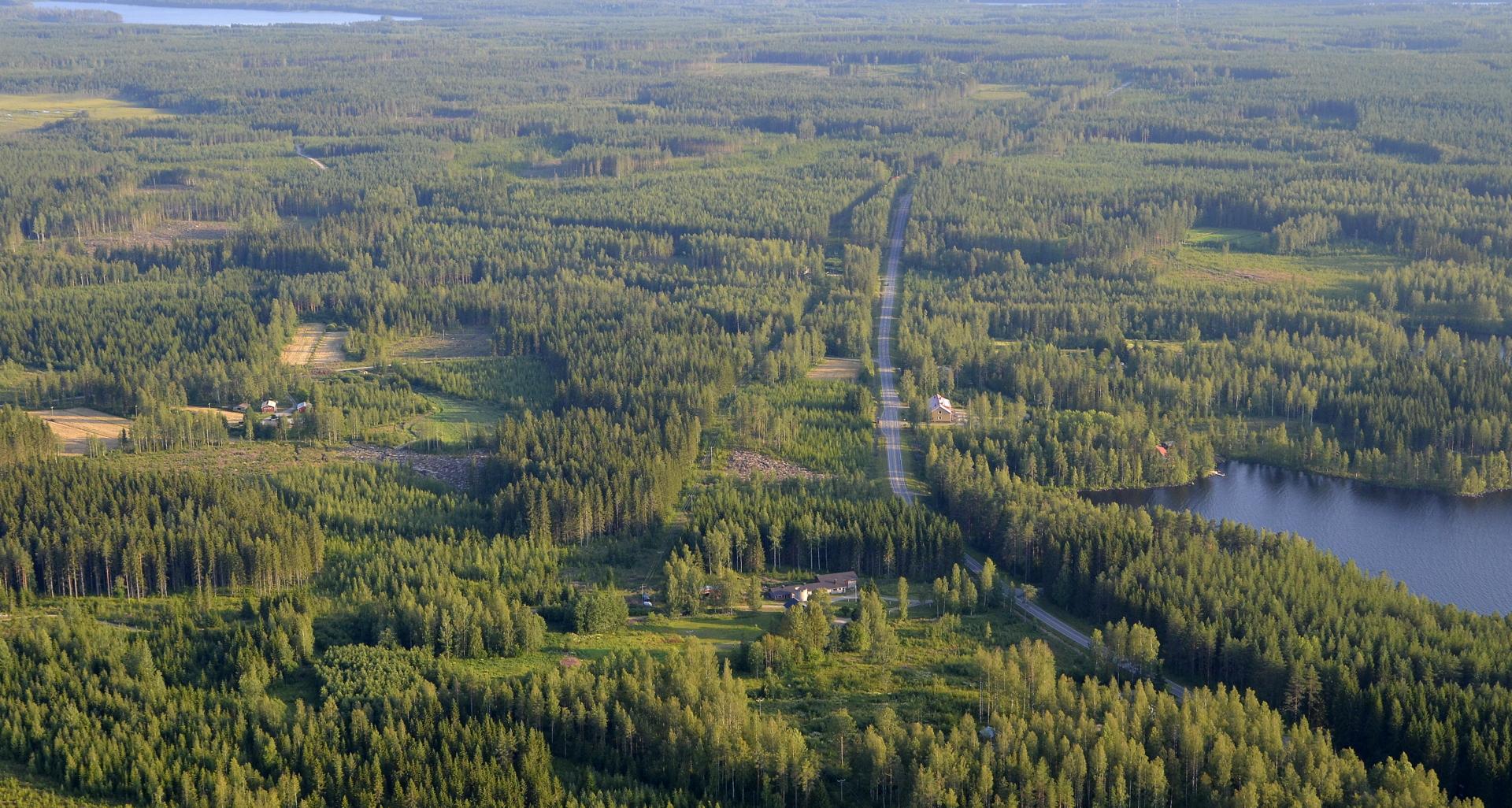 Heitjärven pohjukassa Mustikkaperä.