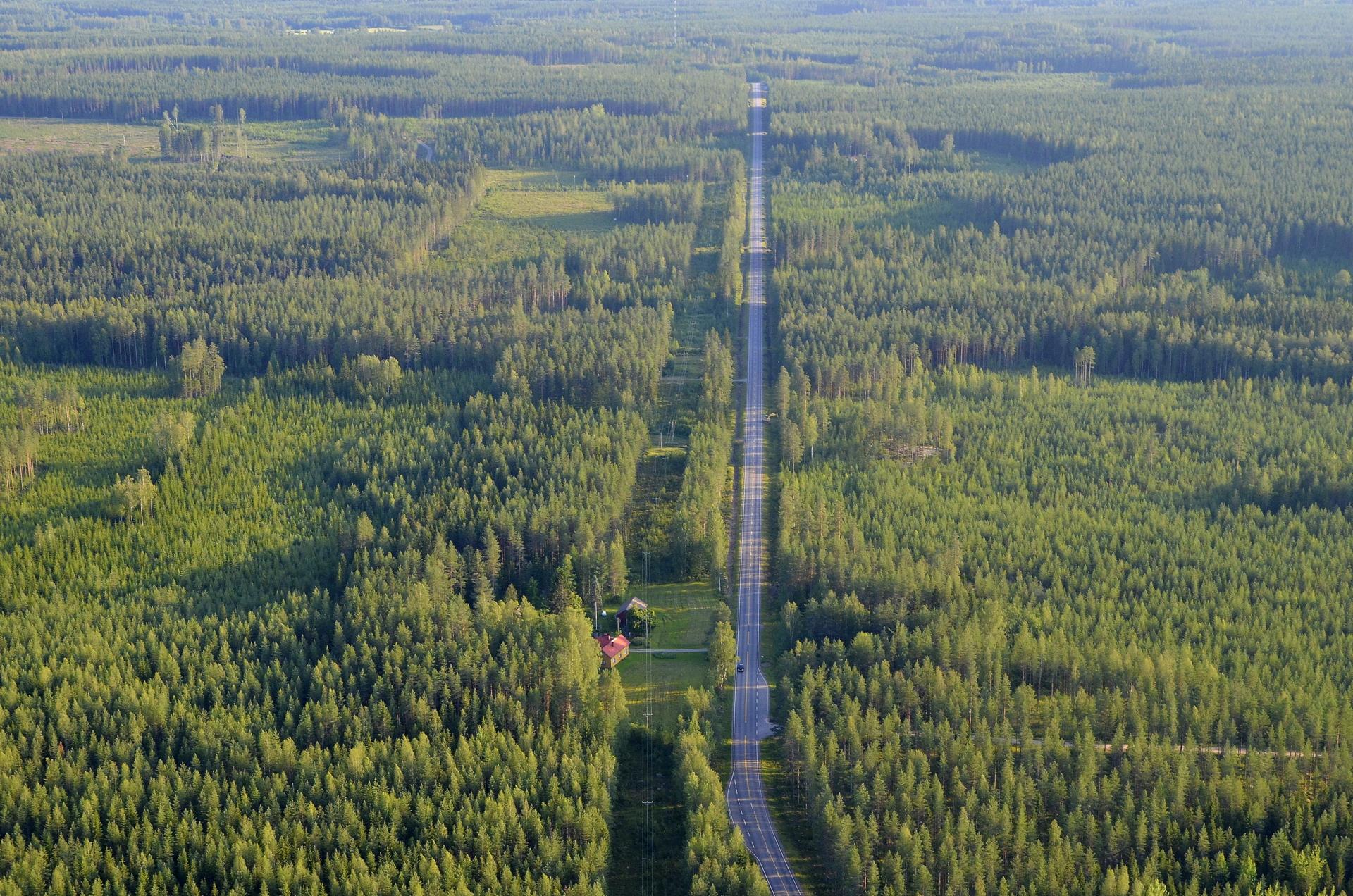 """Oiskohan tämä vaikka """"Surmasuora"""", kun oikealla on Surmamäki. Suoran päässä on Kyyjärvi-Viitasaari tien risteys."""