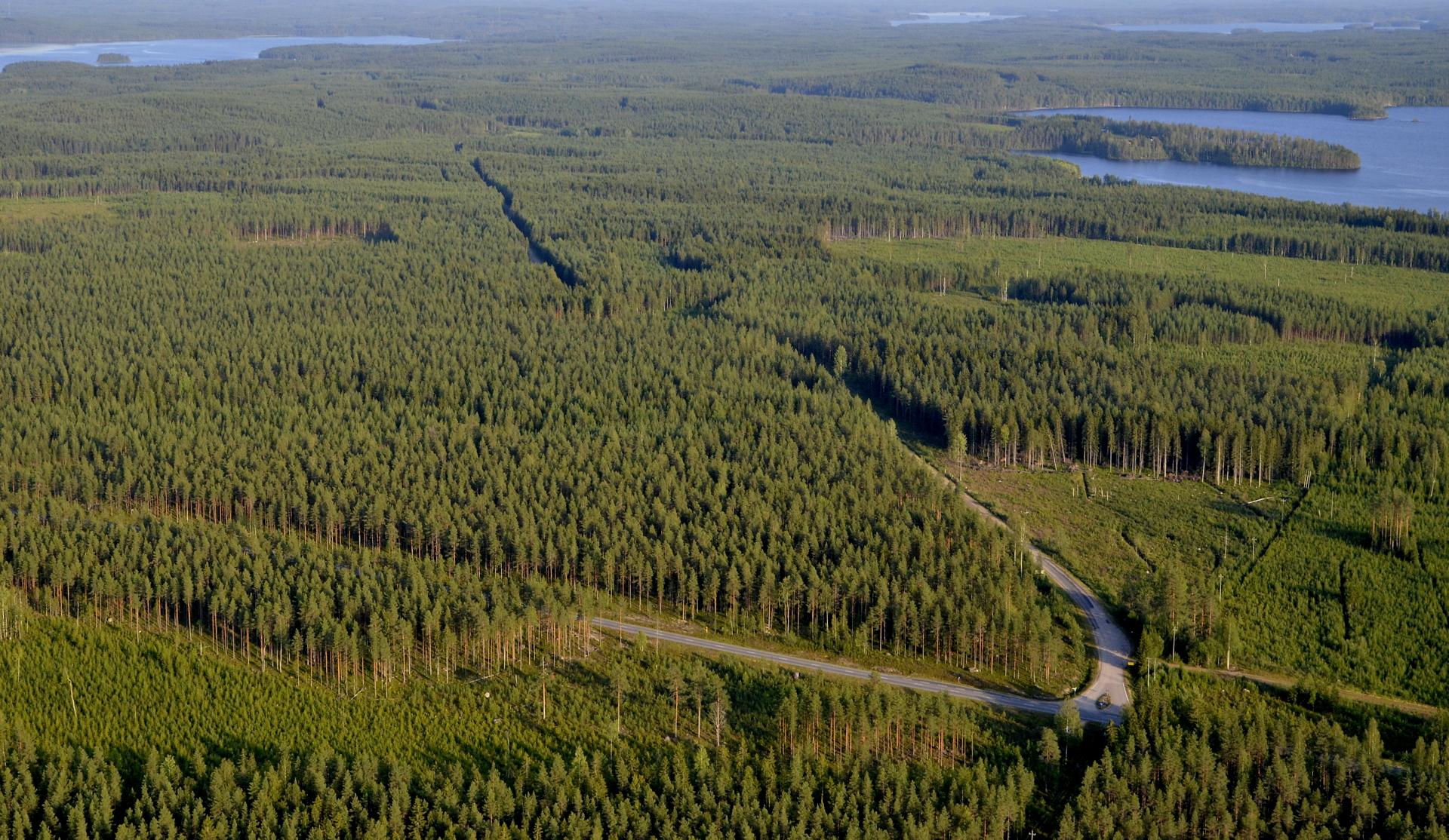 Edessä poikittain Kyyjärvi-Viitasaari tie ja eteenpäin suuntautuva tie vie Kannonkoskelle jota minäkin lennollani seurailen.