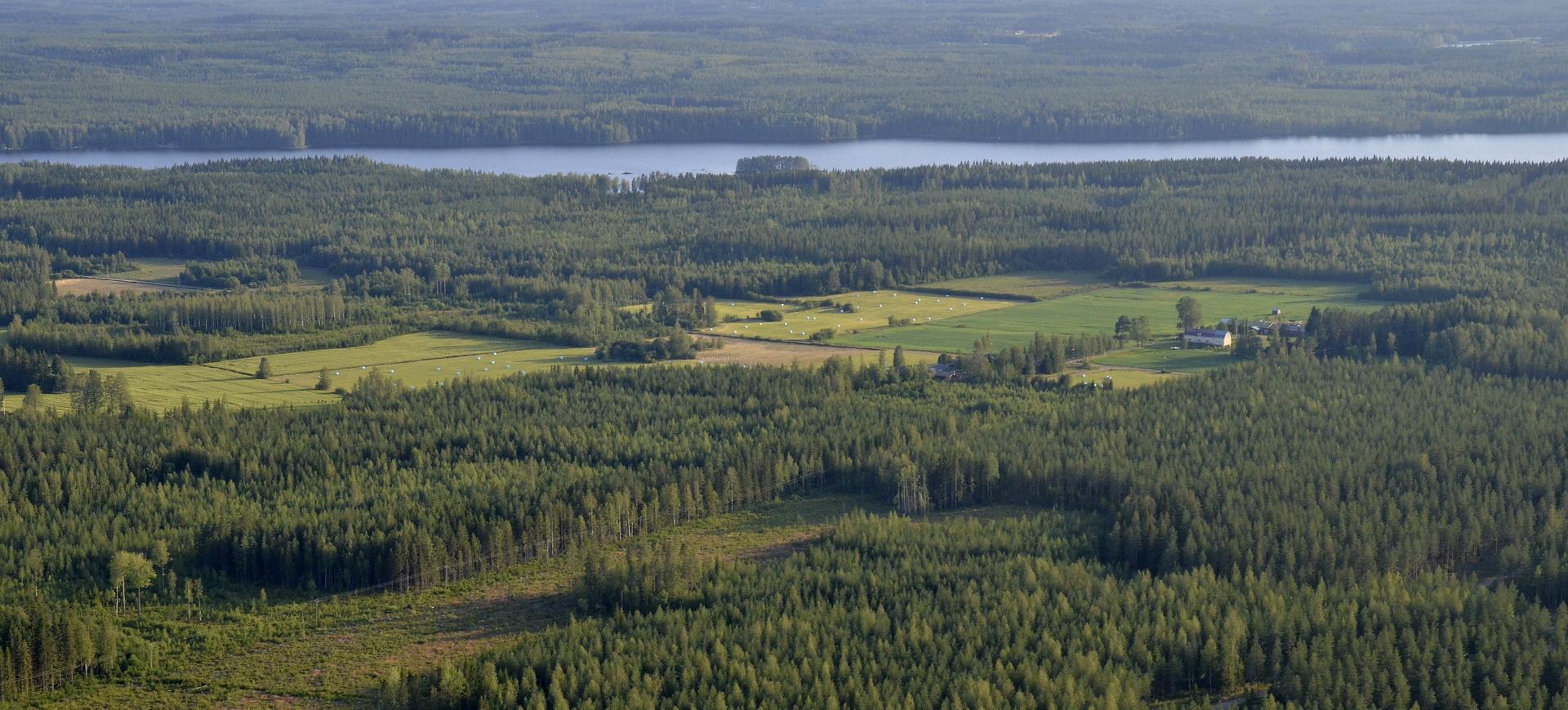 Ylä-Viivajärven kupeella, menosuunnassa oikealla on kyläkunta nimeltään Yläpää.