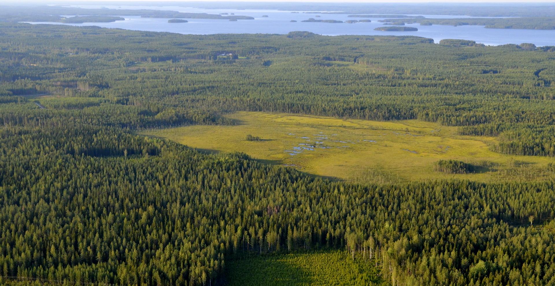 Menosuunnassa vasemmalla Heinäsuo ja Kivijärven selkää aina Kinnulan saakka.