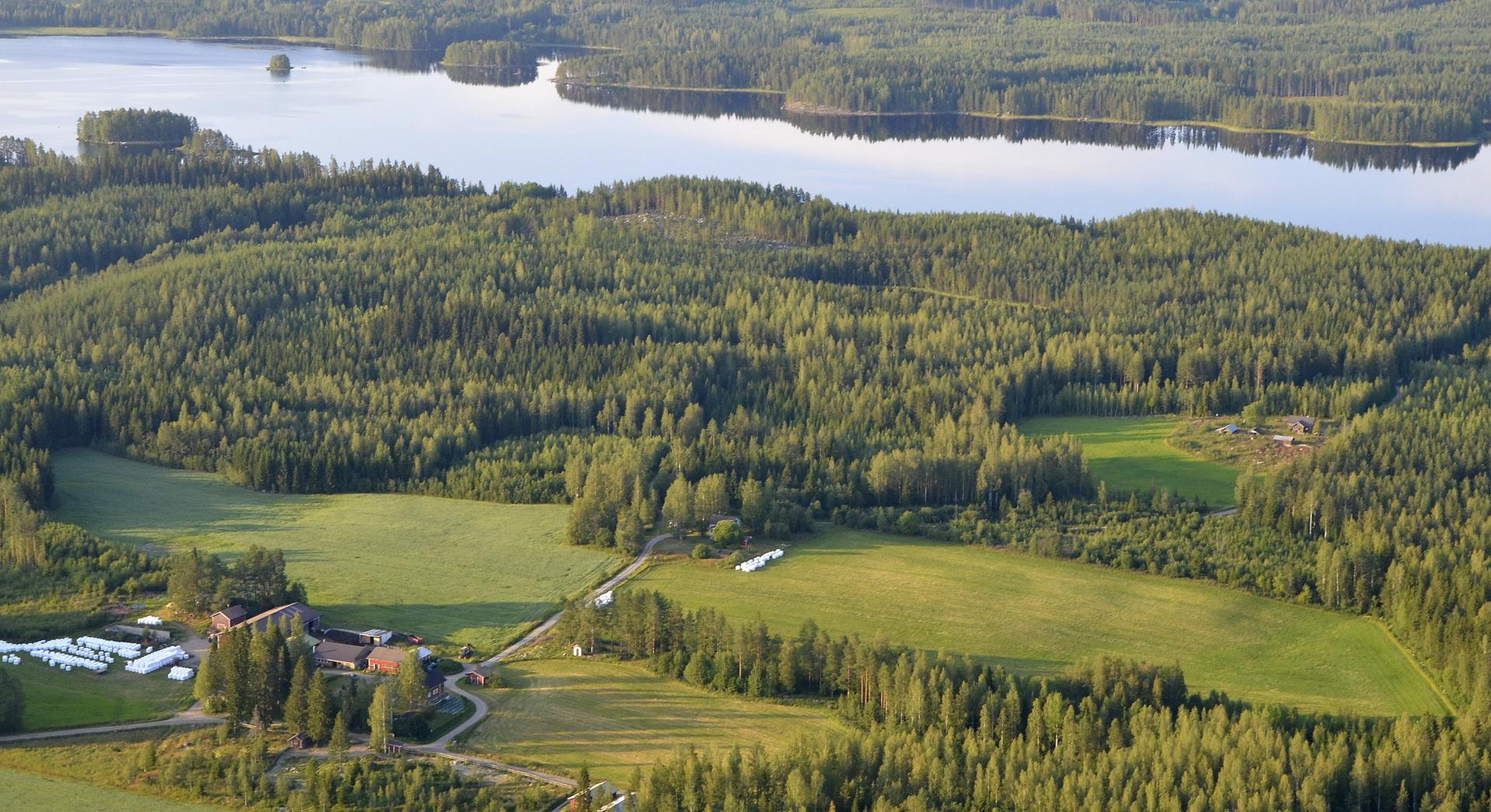 """Onhan näitä """"lentokenttiä"""" täällä Vuoskoskellakin vaikka kuinka. Tilat kuvassa Hevosharju, Pekkala ja Hangonmäki."""