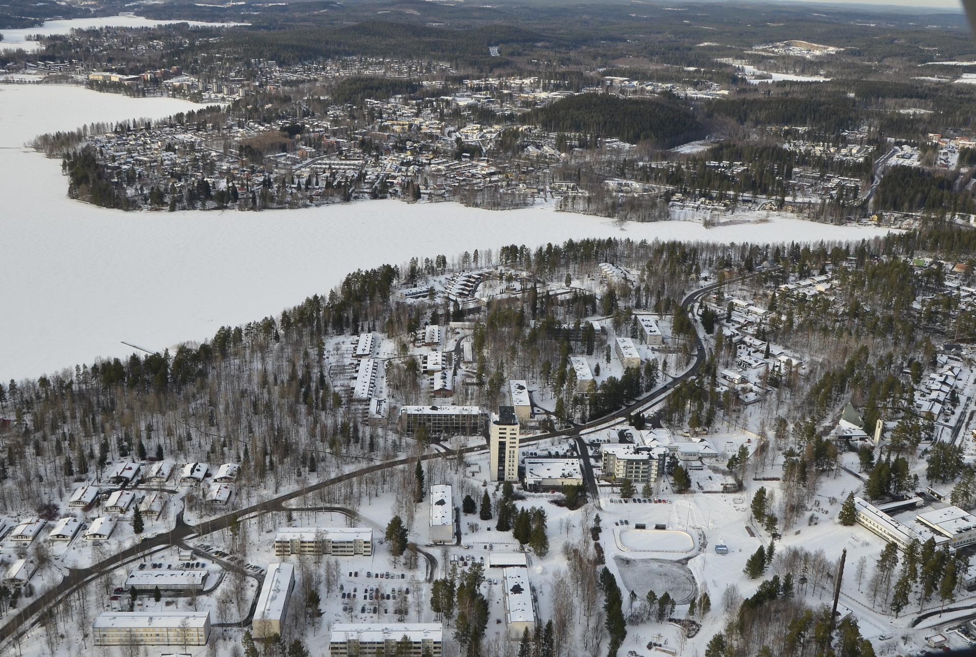 Lahjaharju Palokkajärven rannalla.