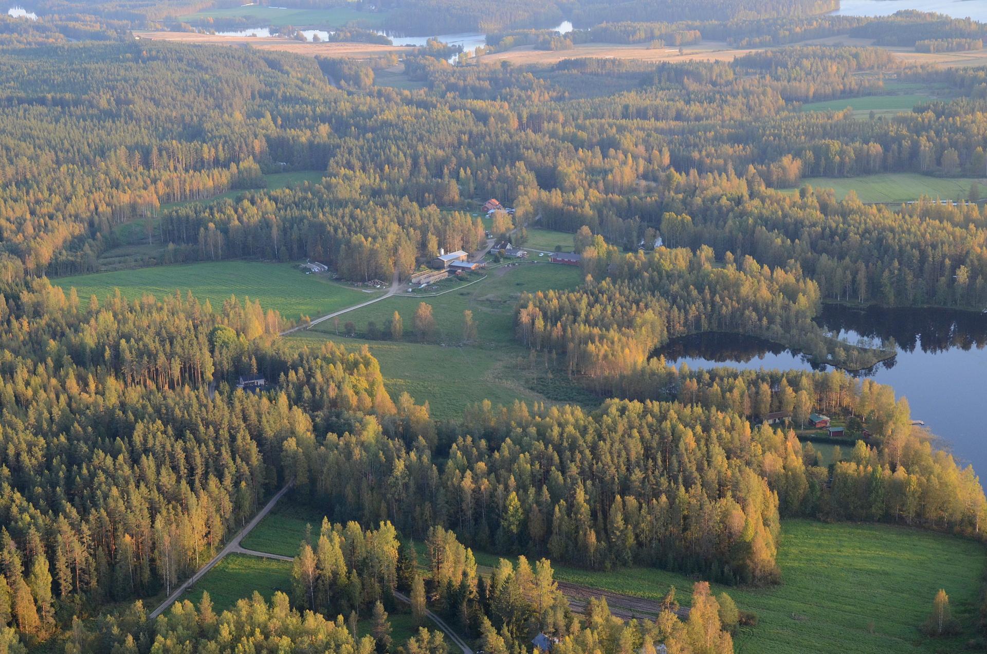 Ahvenlammen eteläpää oikealla, taustalla Kiimasjärvi.