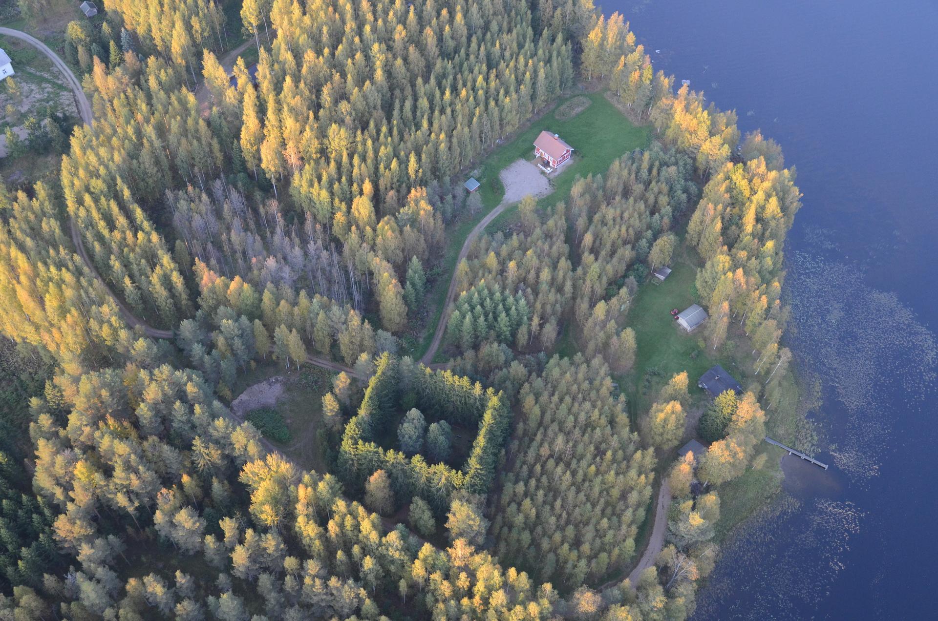 Tässä on hieno metsäkuvio! Paikka on tarkentunut yksityiseksi hautausmaaksi.