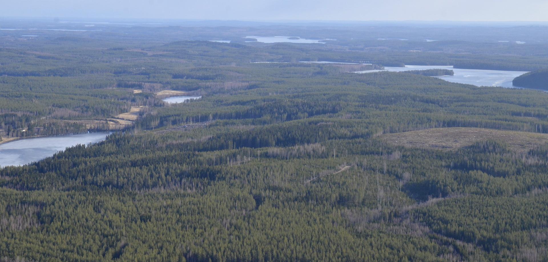 Syvärinen,Jouhtinen ja Jurvojärvi on vielä jäässä.