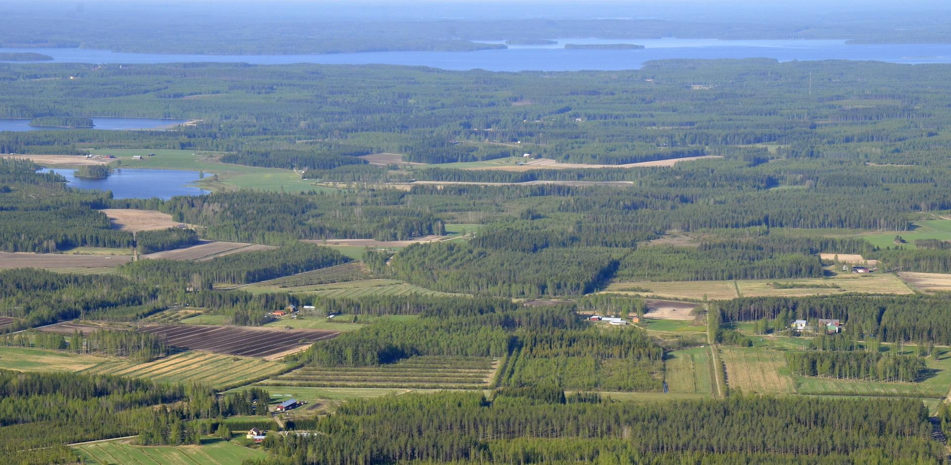 Nyt ollaan Viitakankaan puolella. Taustalla Keitelejärven Pihkurinselkä.