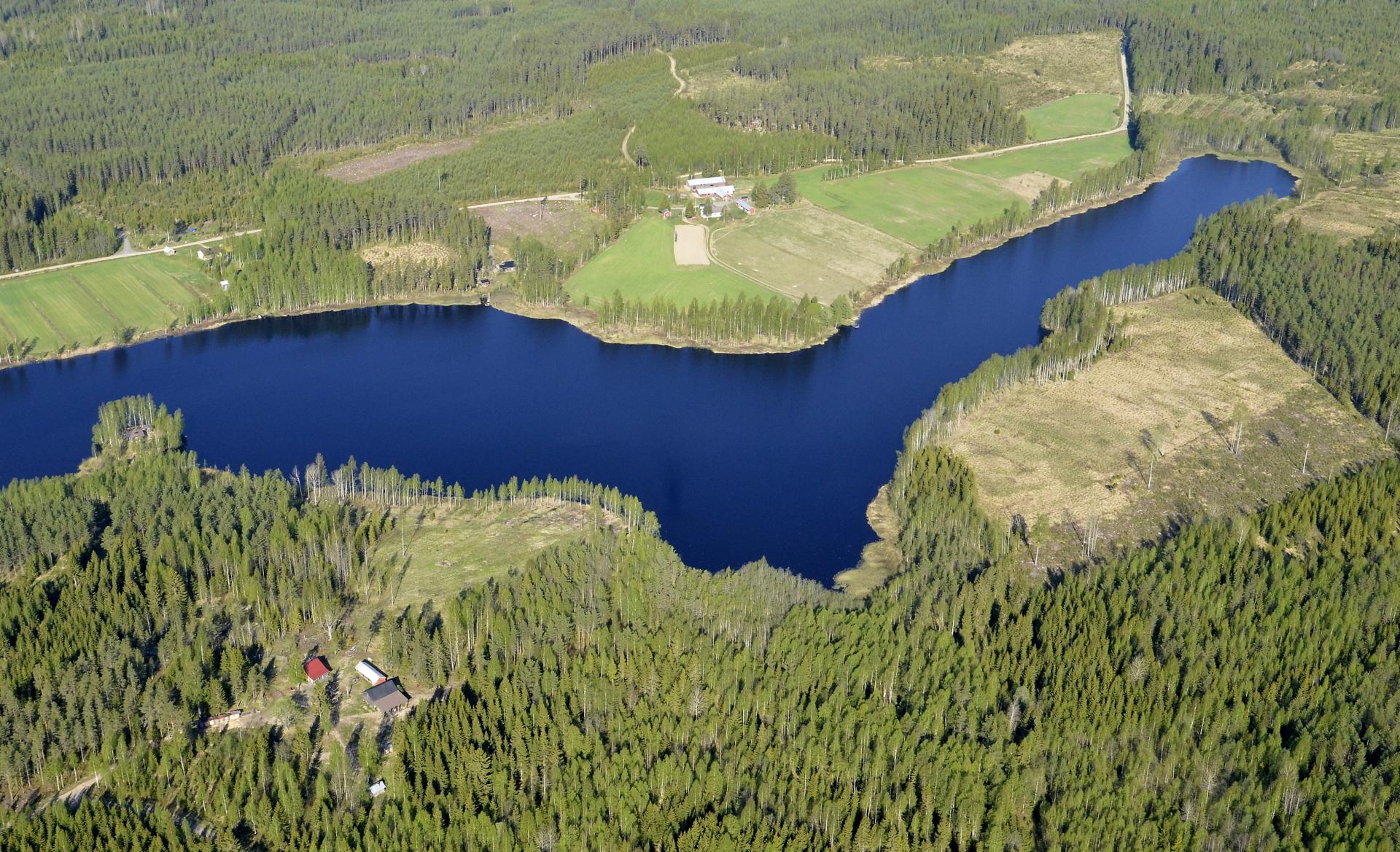 Saarijärvi, vastarannalla Kutuniemi.