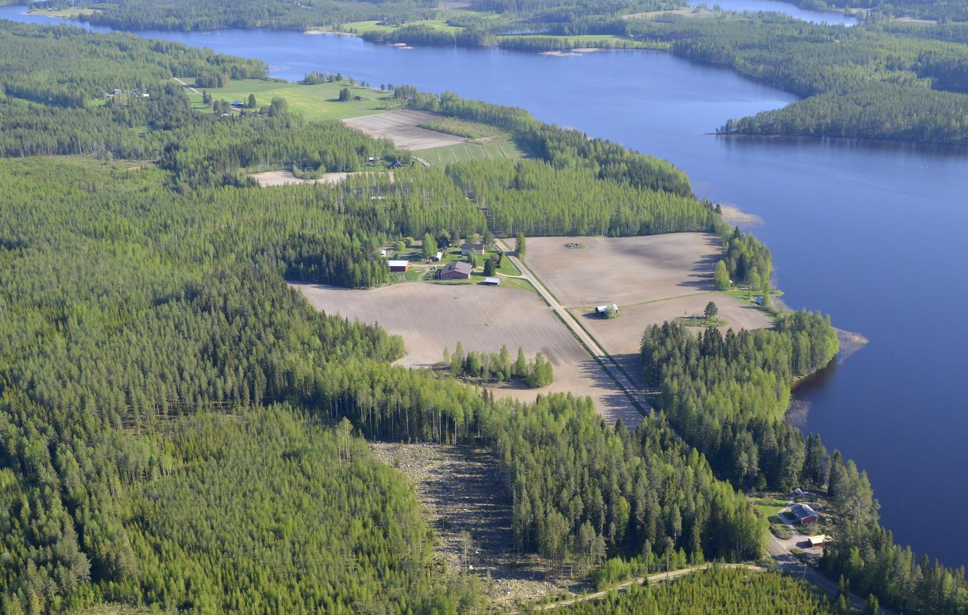 Edetään Viitakankaalta johtavan tien ja Autionlahden kuvetta pohjoiseen. Kuvassa oikealla alhaalla vuosien takainen suomen kaunein piha. Mäkelänranta.