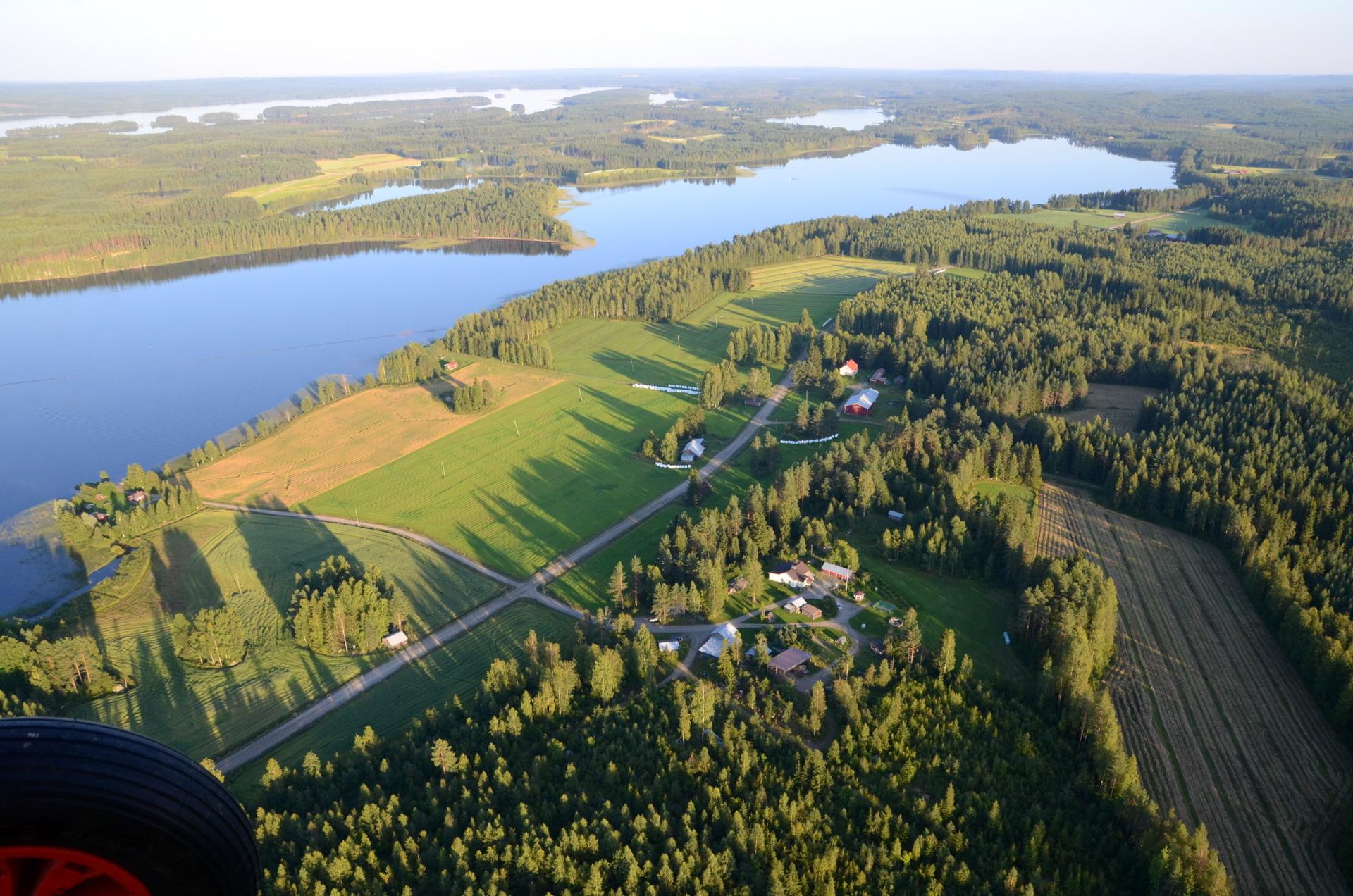 Kuusenmäki ja Hallakorpi. 22.8.2015