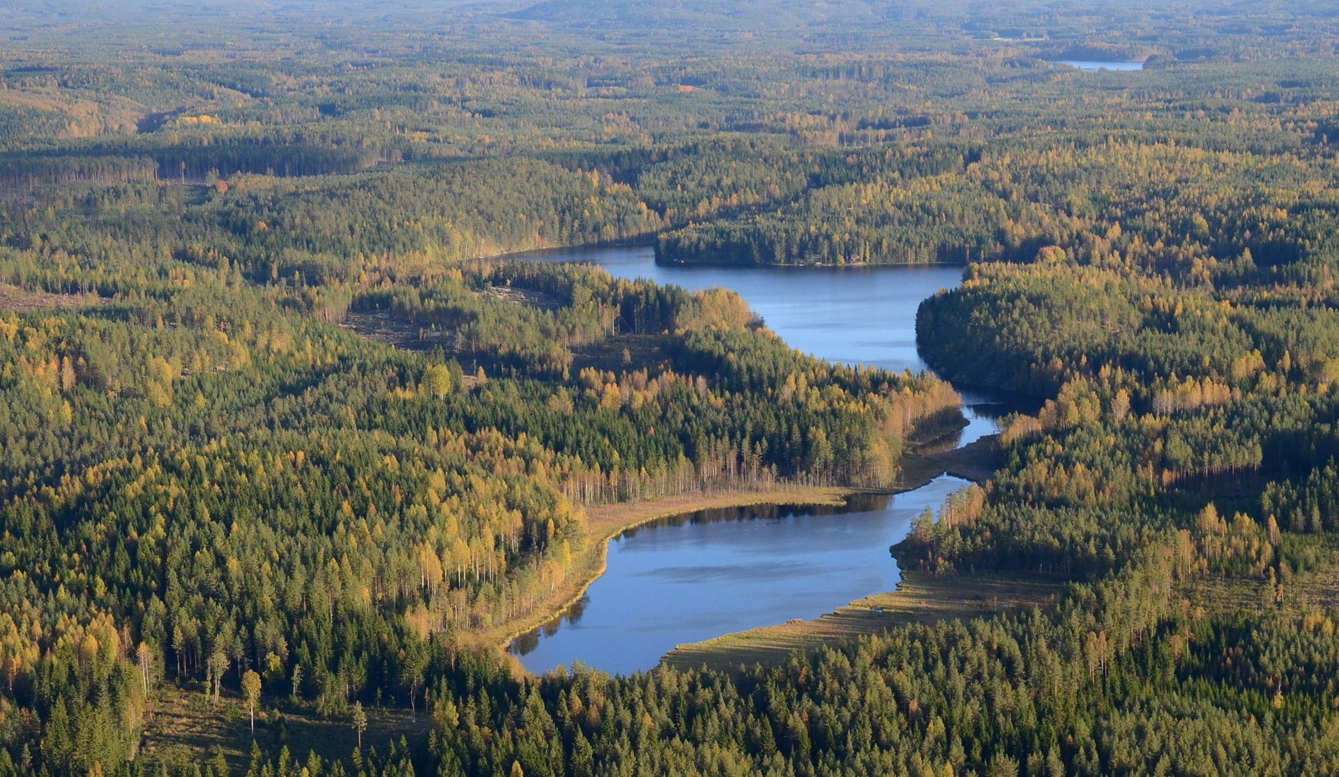 Rauskajärvi Viitakankaan kupeella. 17.9.2016