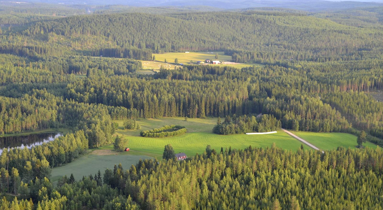 Koivistonkylän näkymiä. Vasemmalla Haukkalampi.