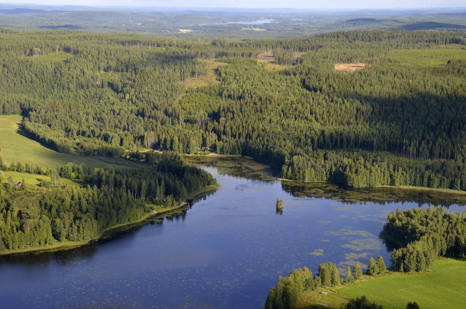 Hitonlahti Hitonmäen kainalossa. Taustalla Peurunkajärvi.