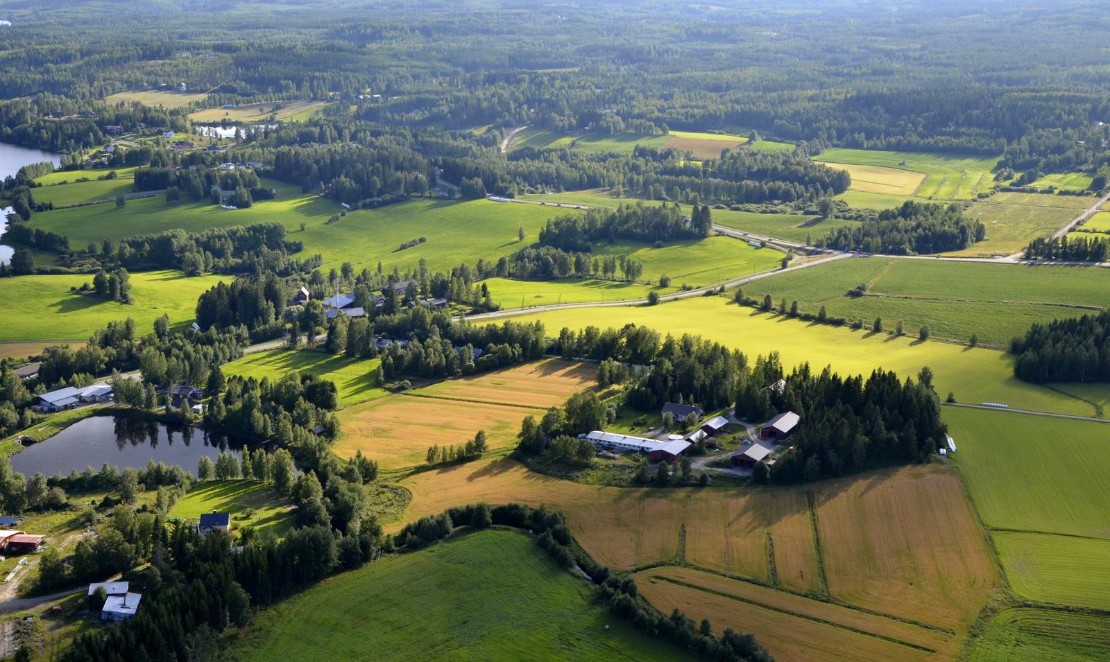 Puuppolan nätit maisemat:)