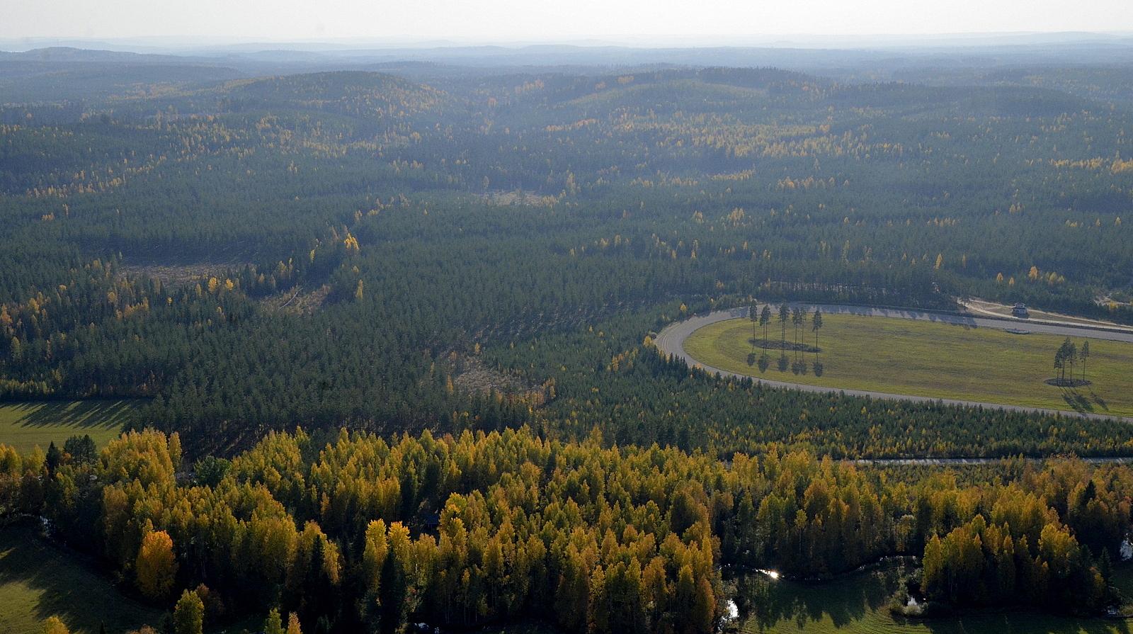 Liimattalan tuulipuiston aluetta raviradan takana.
