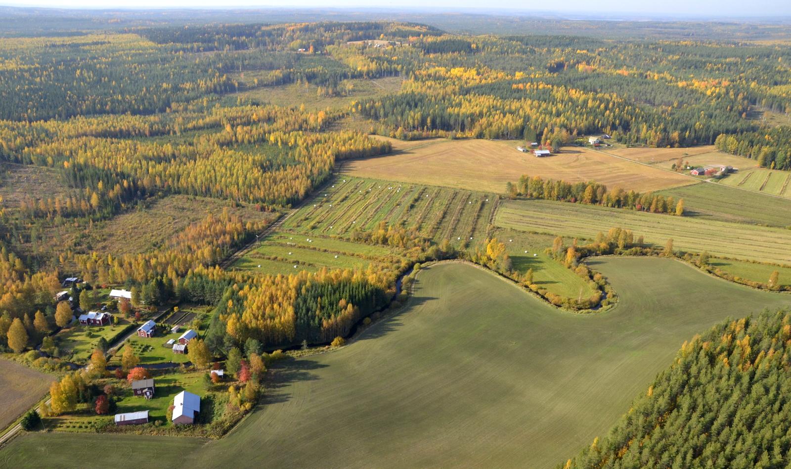 Nyt lähdemme matkaamaan Pyhähäkin Kansallispuiston kautta Liimattalaan. Kuvassa Käräjämäki Kannonkosken puolella.