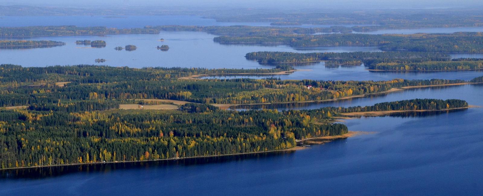 Niemet lähimmästä alkaen: Räihän-, Haapa-, Soskon- ja Nerunniemi. Oikealla niemien vastarannalla Riihiniemi.