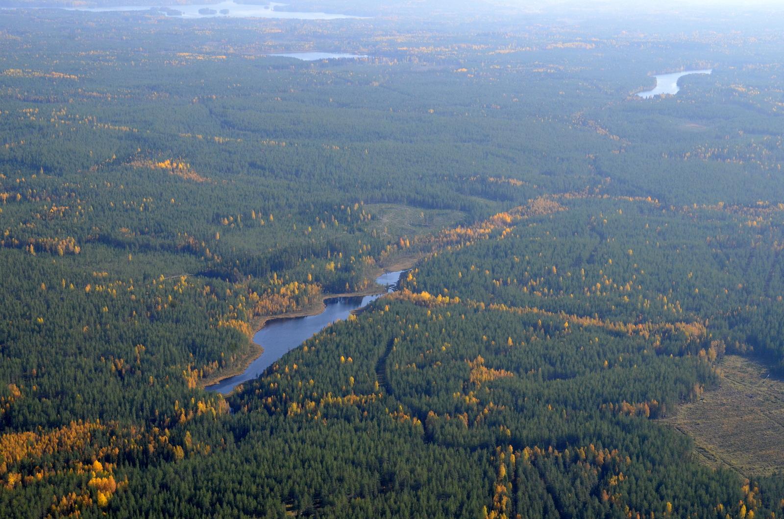 Mahdollisen puiston alueella oleva Pitkäsenlampi, oikealla Pitkänen. Keskellä Murojärvi ja taustalla Iisjärvi.