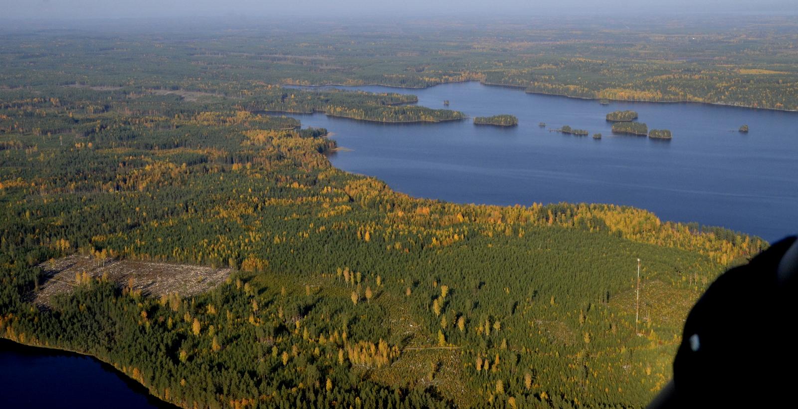 Iisjärven pohjoista päätä. Tuliniemi ja Höyhenniemi. Vasemmalla Iso-Tasanenjärvi.