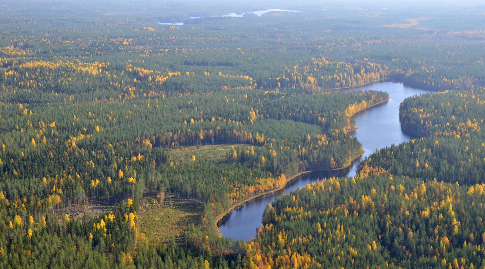 Kaihilampi. Taustalla Kohmujärvi, joka on osin Kannonkosken, Konginkankaan/Äänekosken ja Saarijärven aluetta.